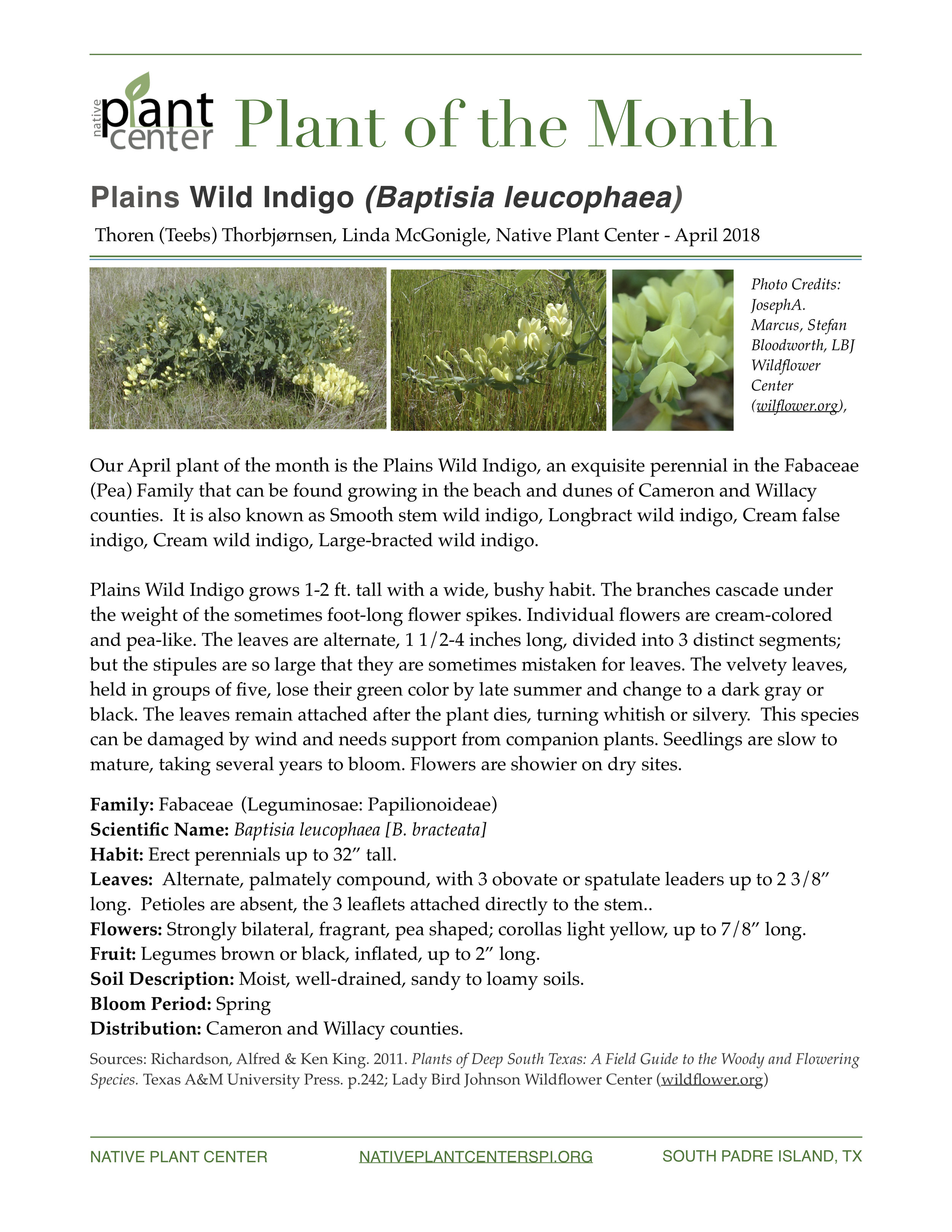 NPC Plant of the Month 4.2018.jpg