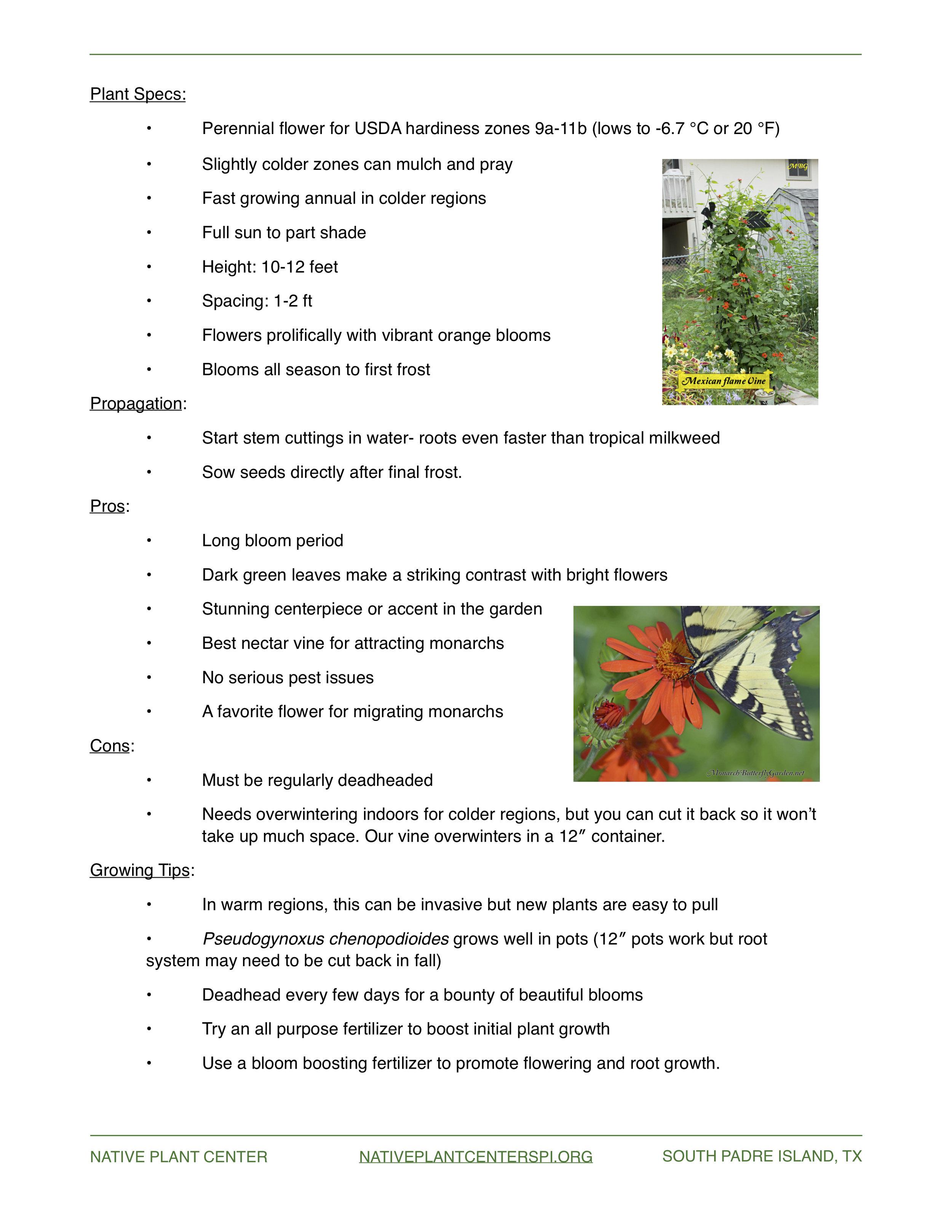 NPC Plant of the Month 8.2017 pg.2.jpg