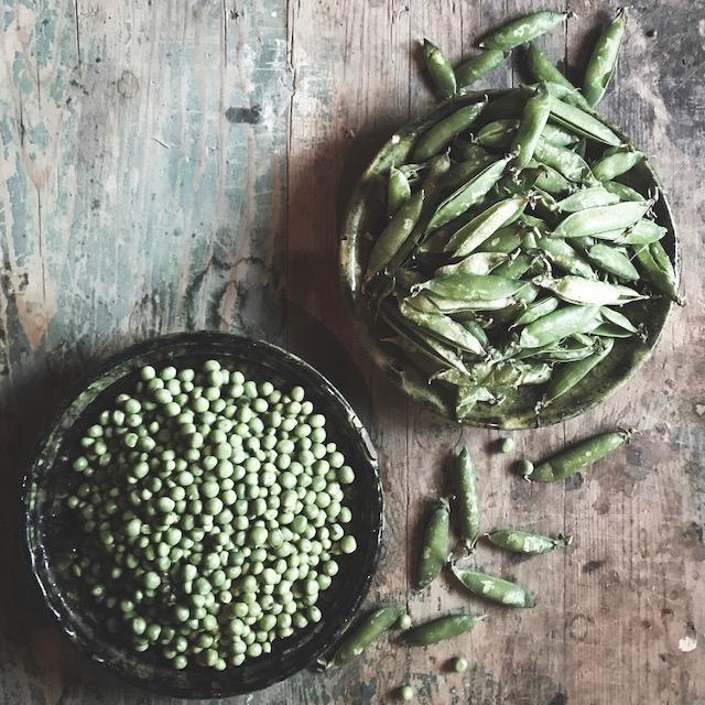a few peas in a pod