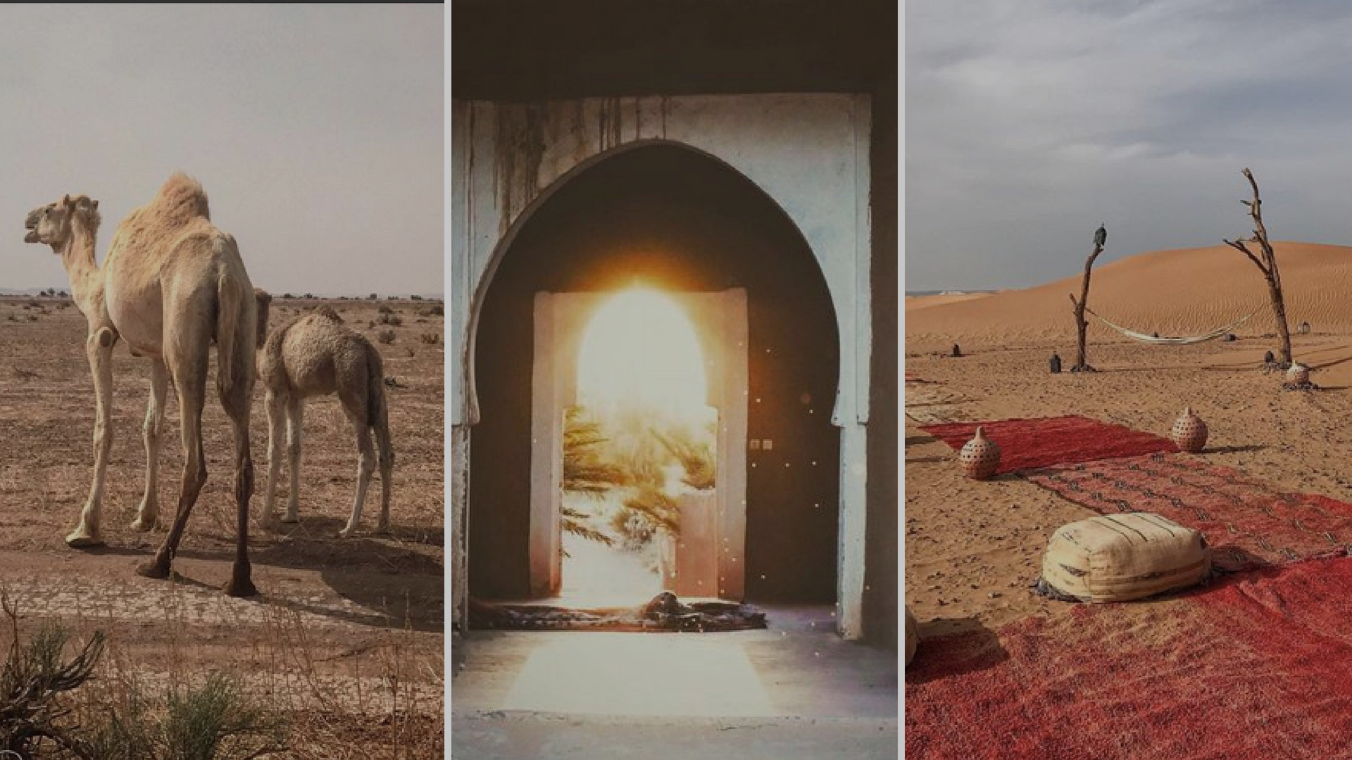 Morocco sahara kasbah.jpg