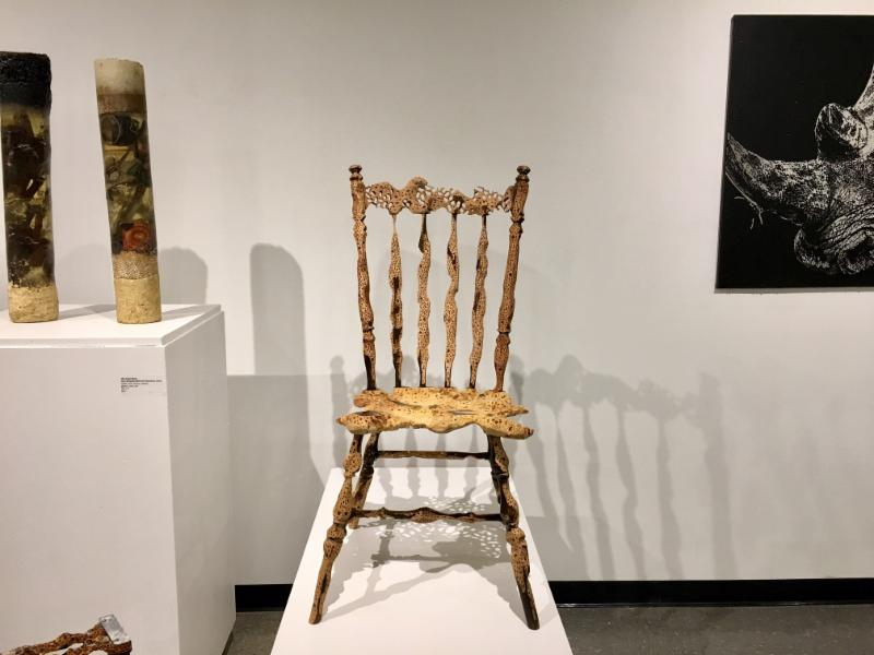 1st place:  Shelby Fleming,   Osteoporosis: Chair  2015