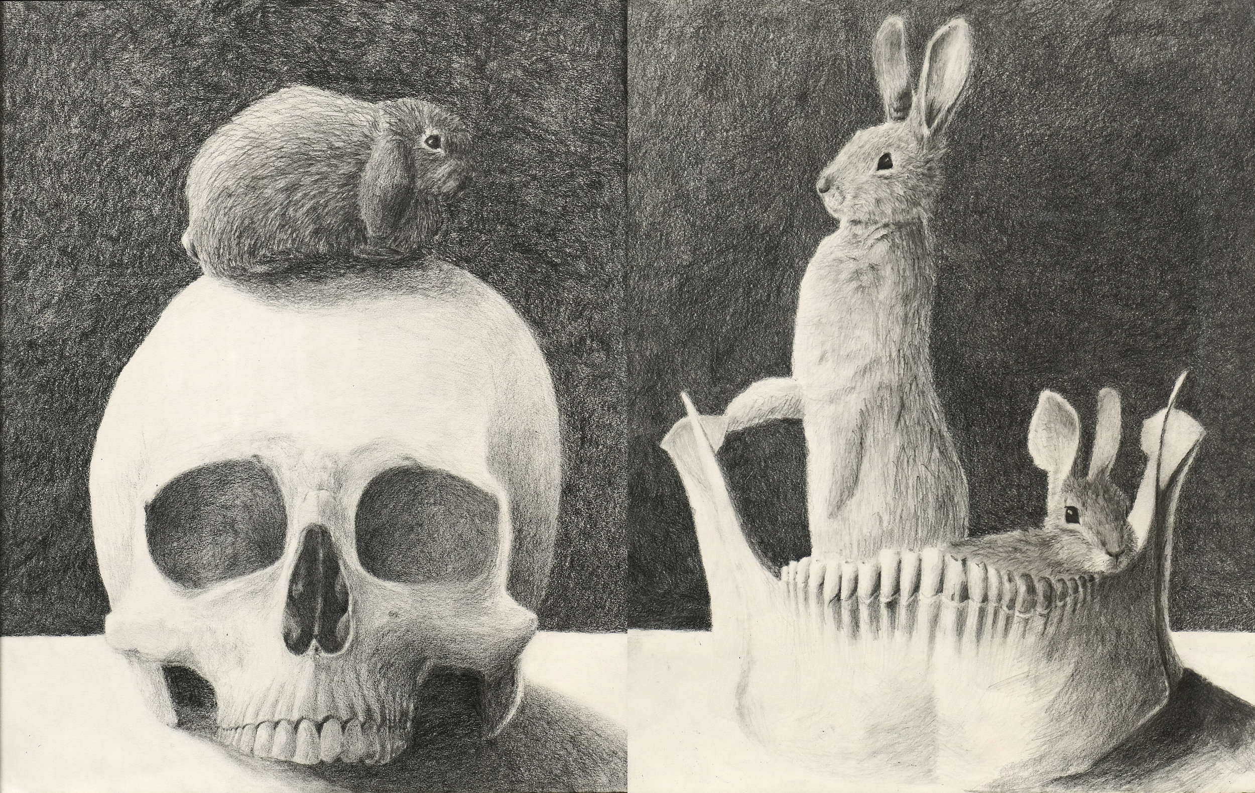 """""""Speechless,"""" graphite on paper, diptych 18"""" x 24"""" total"""