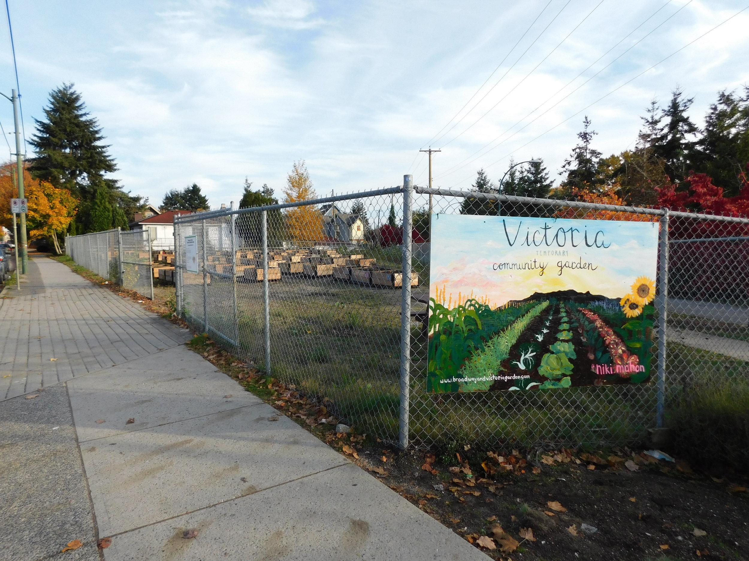 Victoria_Broadway_Vancouver_Community_Garden_Builders-0015.JPG