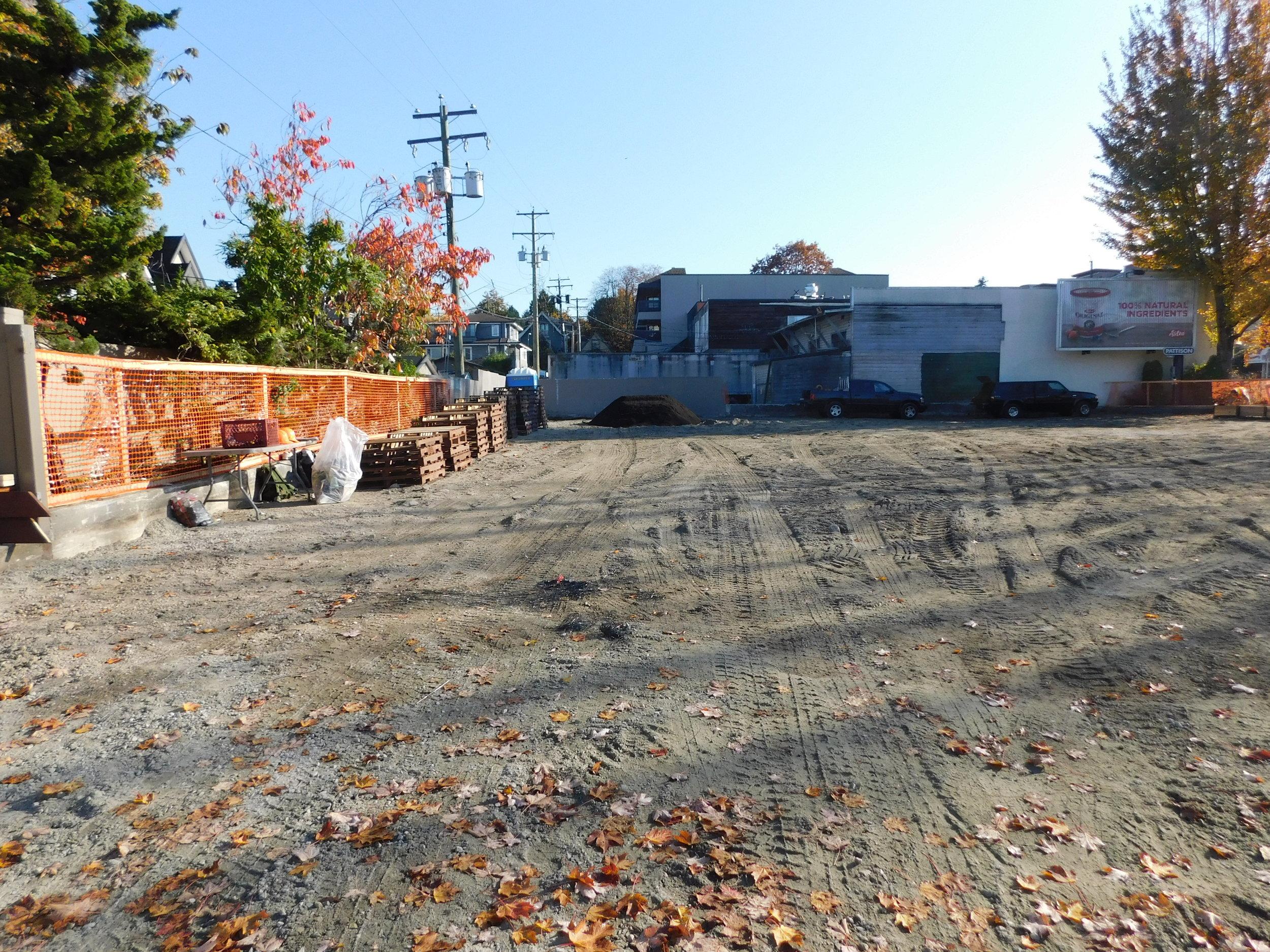 4th_Macdonald_Vancouver_Community_Garden_Builders-0007.JPG