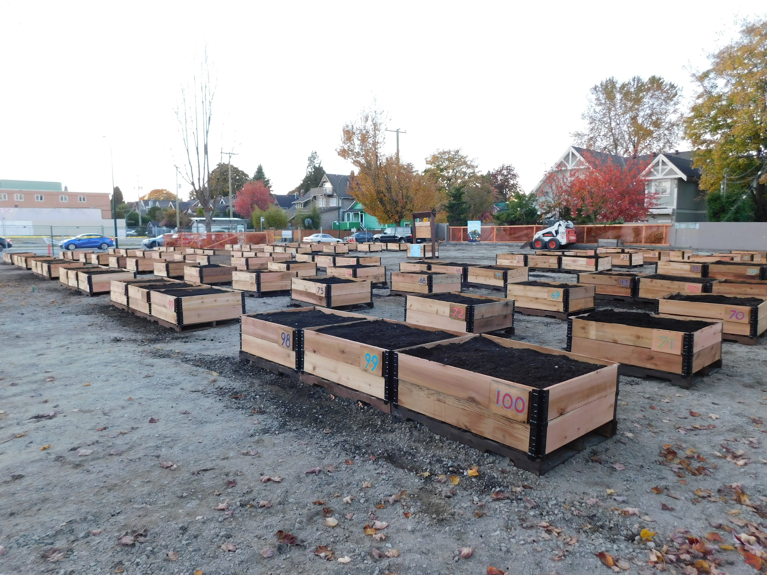 4th_Macdonald_Vancouver_Community_Garden_Builders-0026.JPG