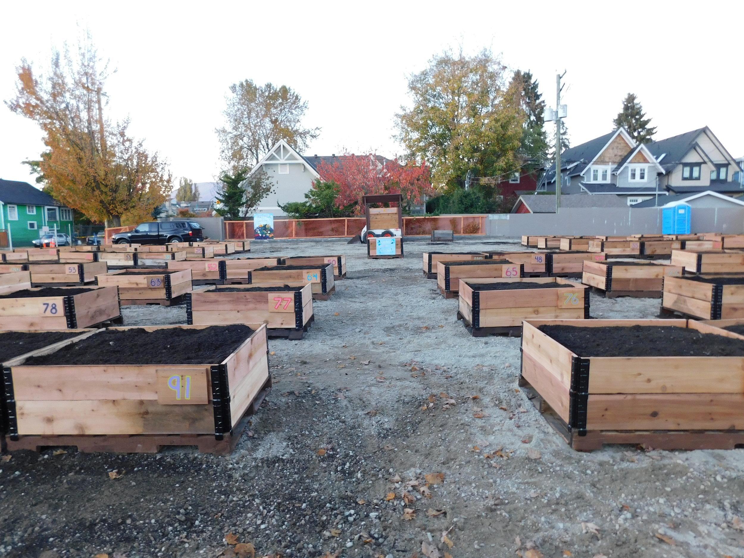 4th_Macdonald_Vancouver_Community_Garden_Builders-0025.JPG