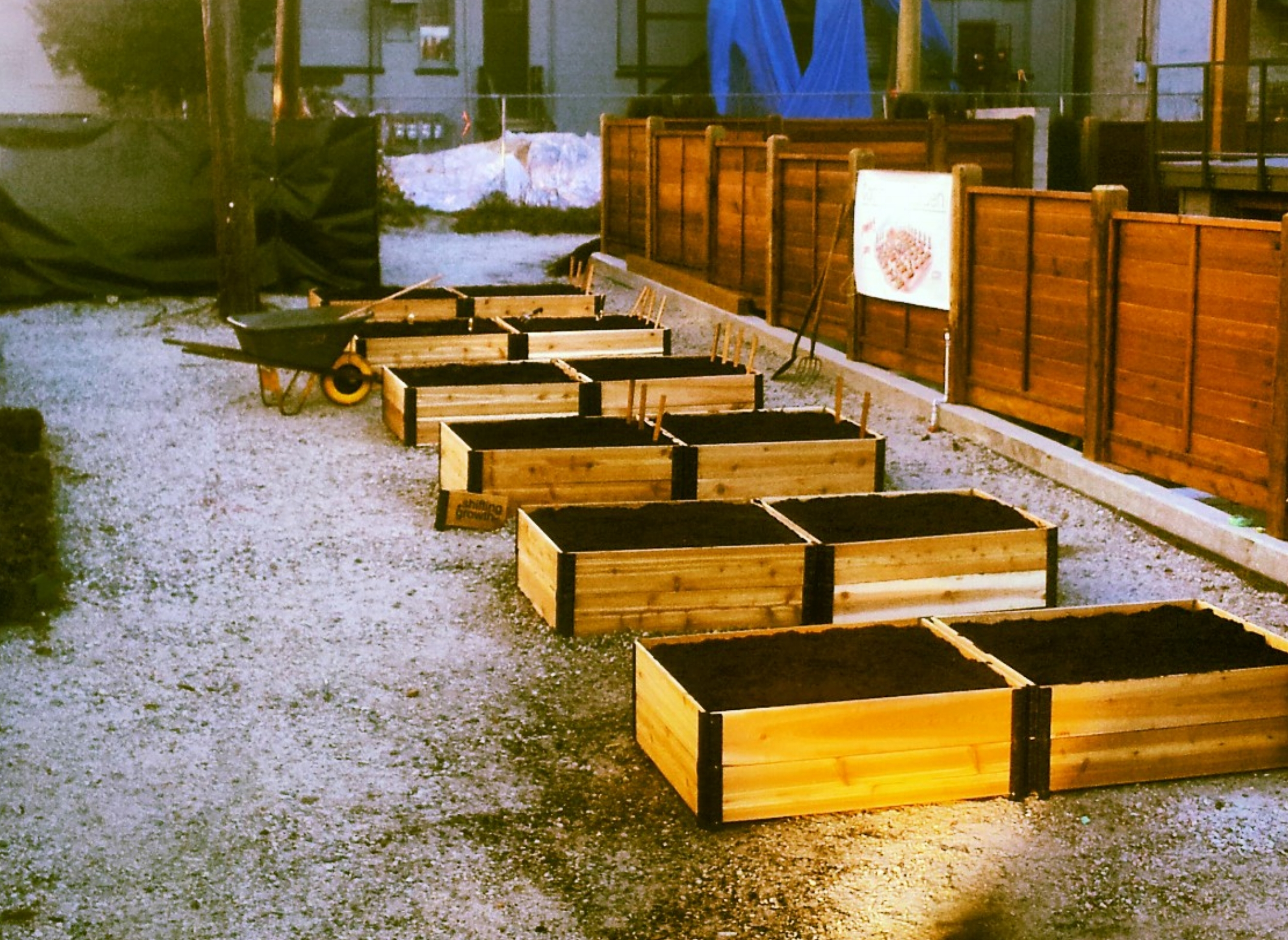 Community_Garden_Builders-NOW_Developments_3.jpg