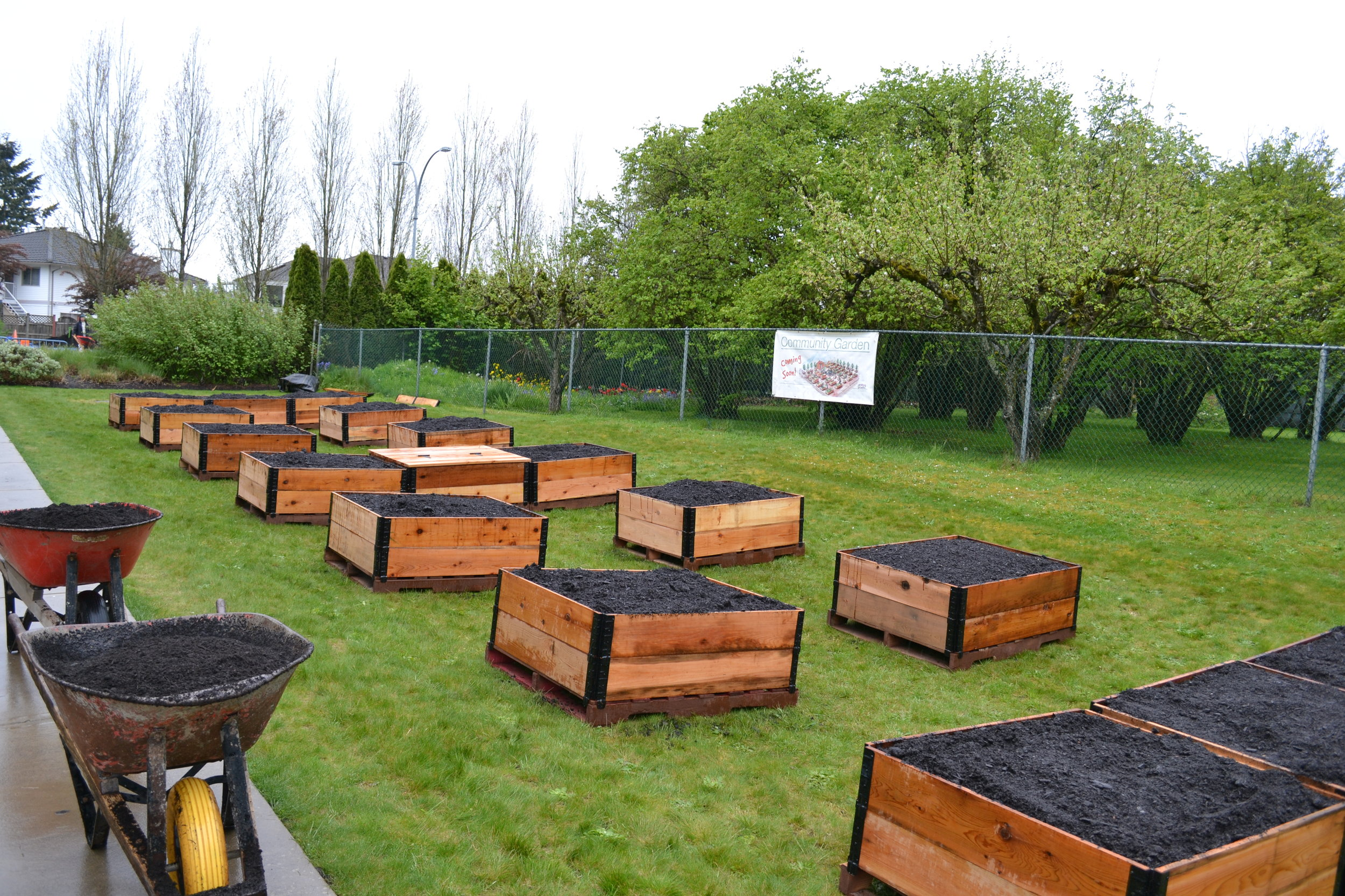 Kwantlen_Raised_garden_beds_Community