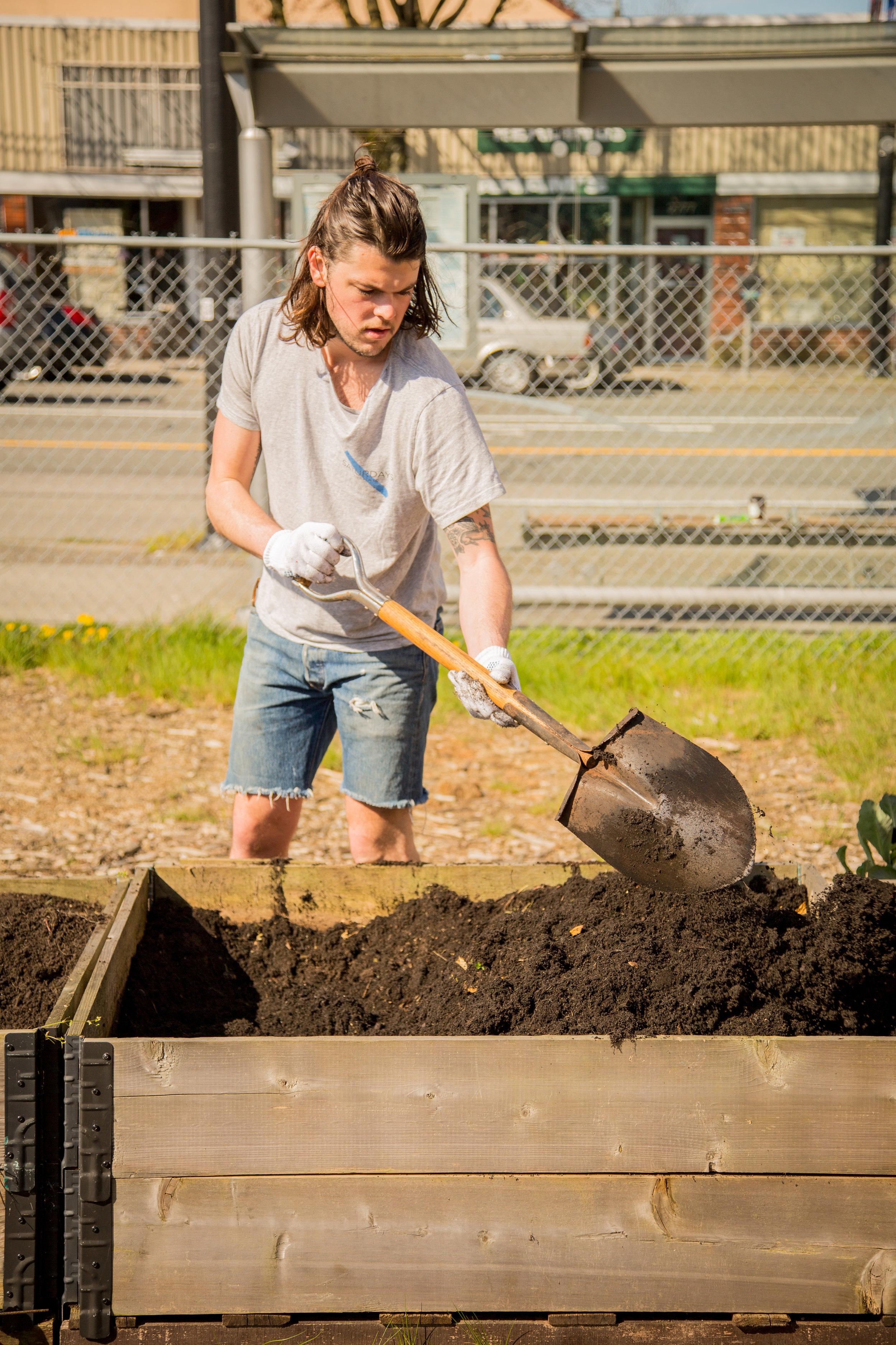 Raised_Garden_Bed_The_Drive_Temporary_Community_Garden_04.2016_Shifting_Growth_152.jpg