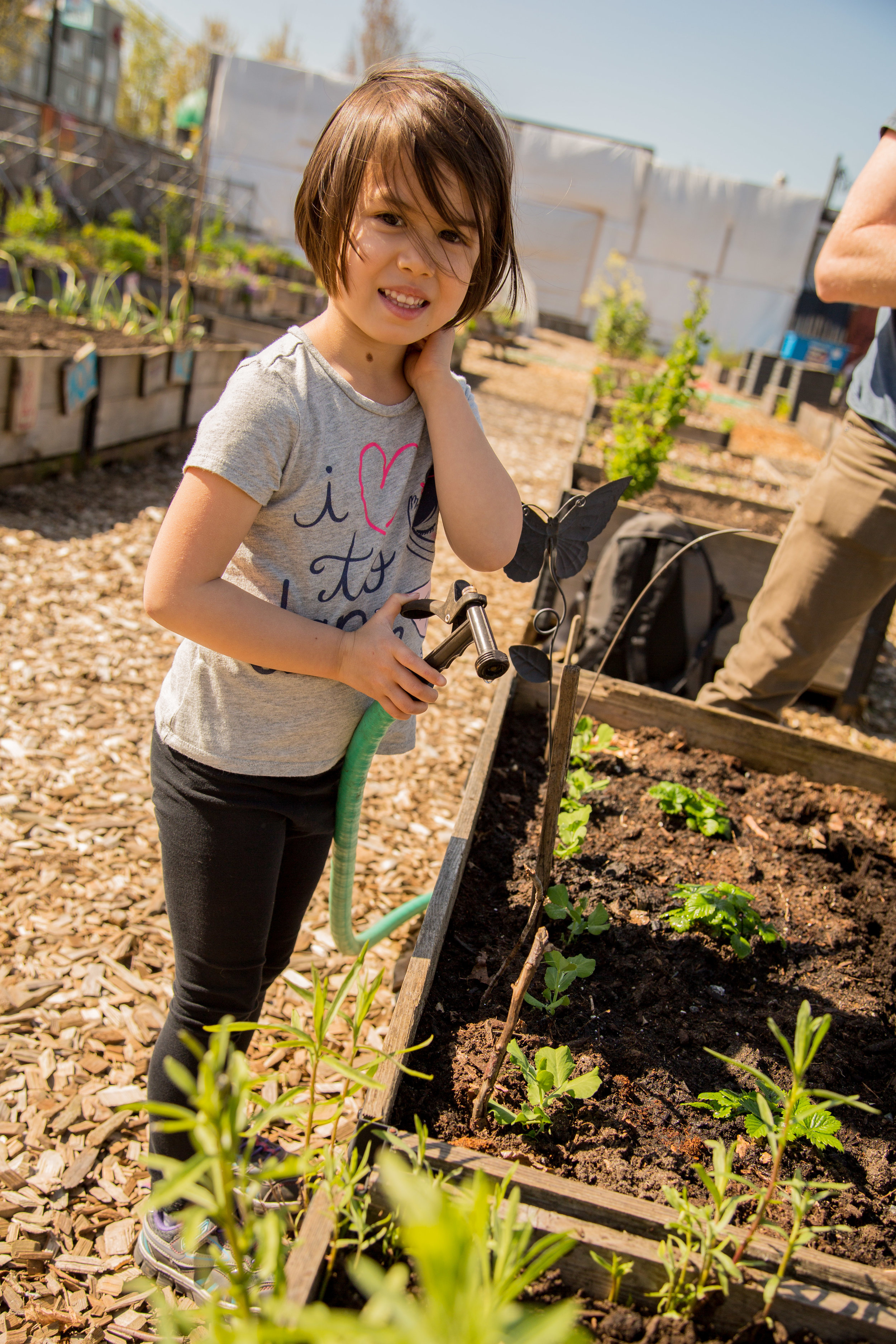 Raised_Garden_Bed_Hastings_North_Temporary_Community_Garden_04.2016_Shifting_Growth_45.jpg