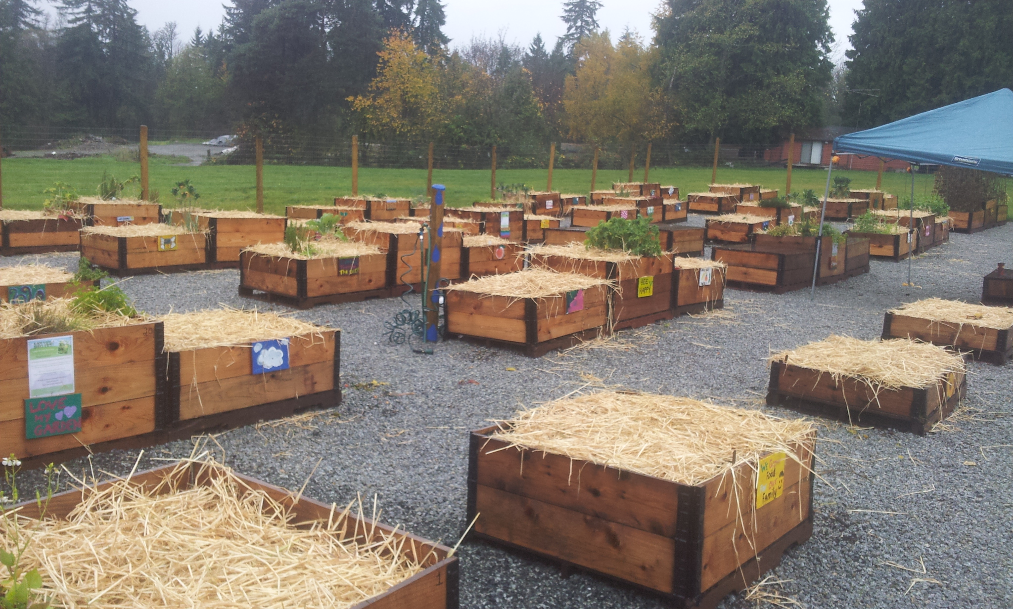 burke-mountain-temporary-community-garden-closing-112013_11244584505_o.jpg