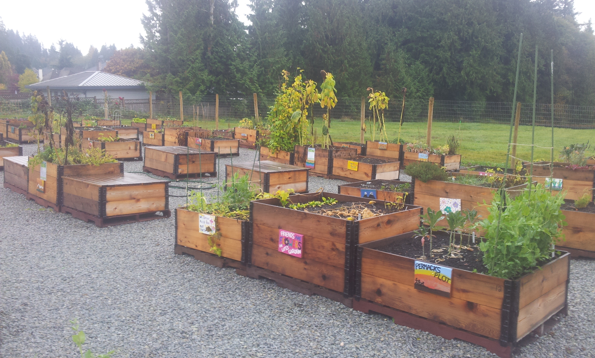 burke-mountain-temporary-community-garden-closing-112013_11244624946_o.jpg