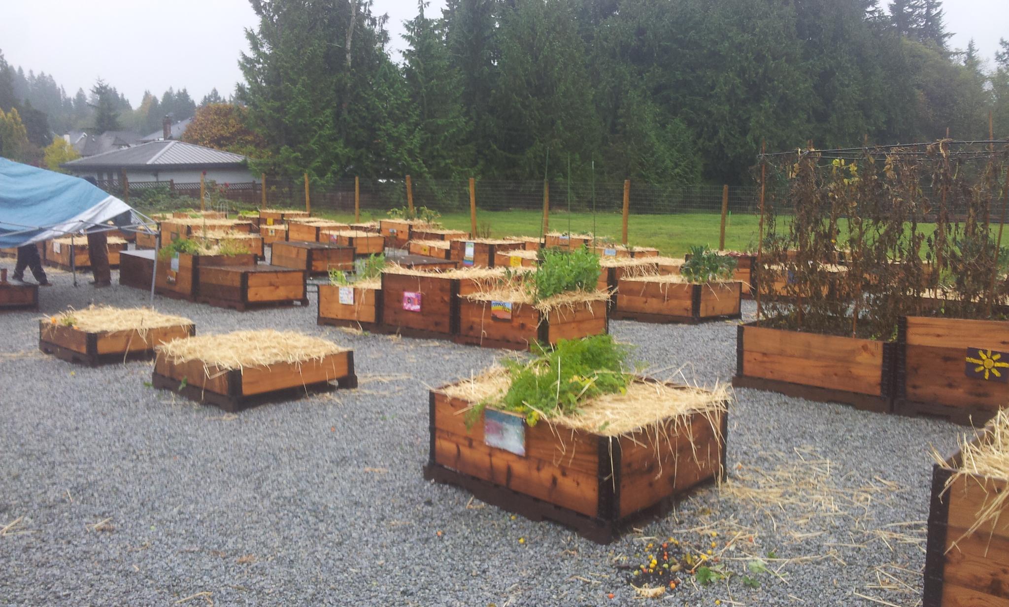 burke-mountain-temporary-community-garden-closing-112013_11244625956_o.jpg
