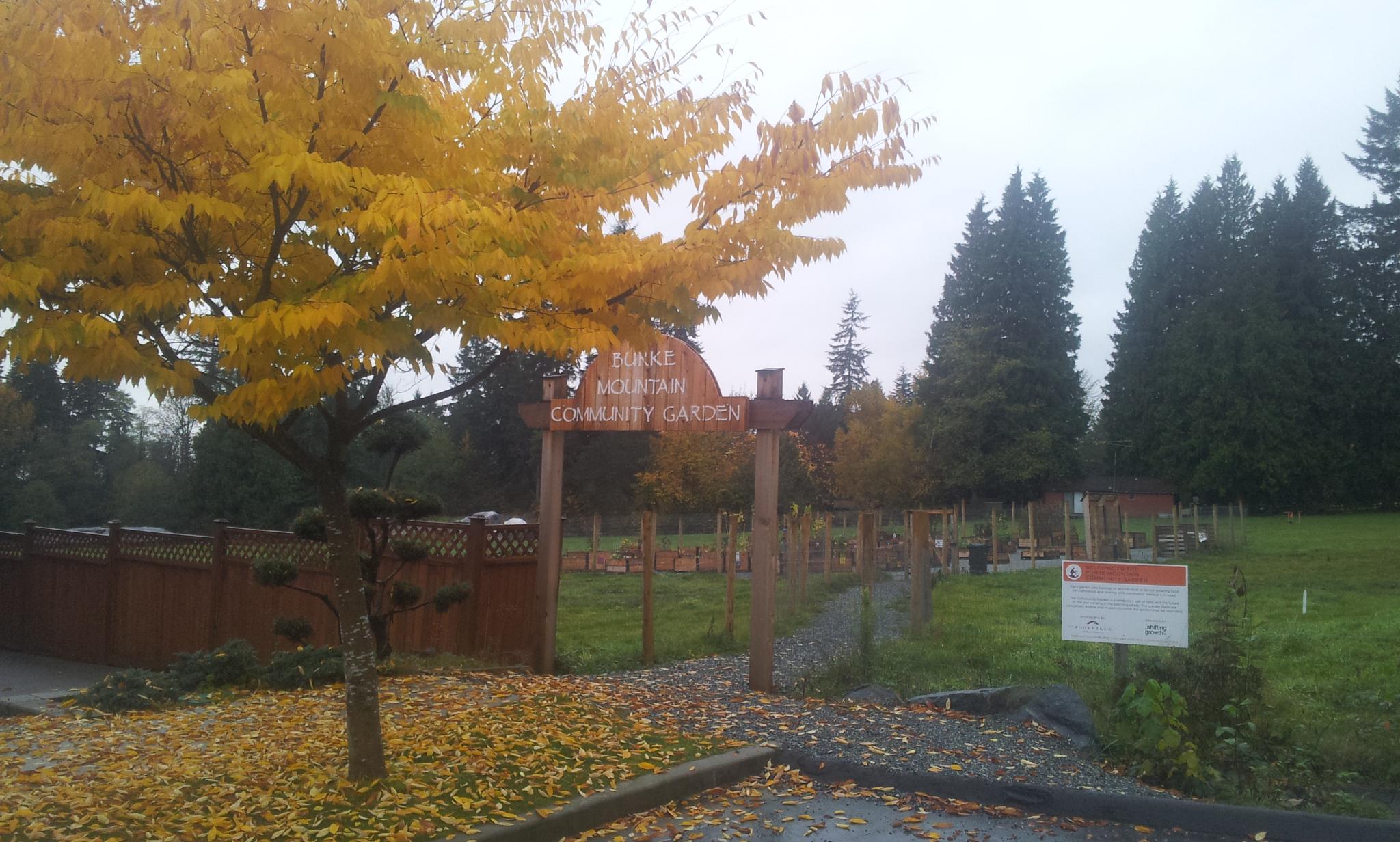 burke-mountain-temporary-community-garden-closing-112013_11244656286_o.jpg
