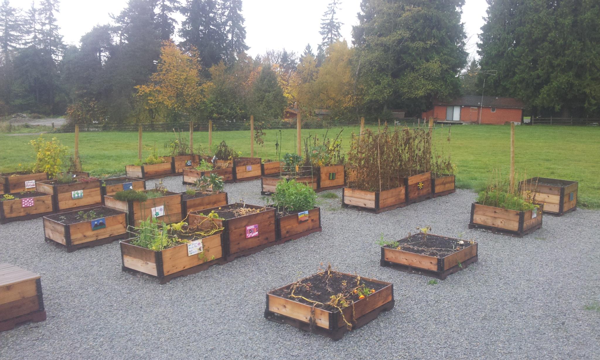 burke-mountain-temporary-community-garden-closing-112013_11244686013_o.jpg