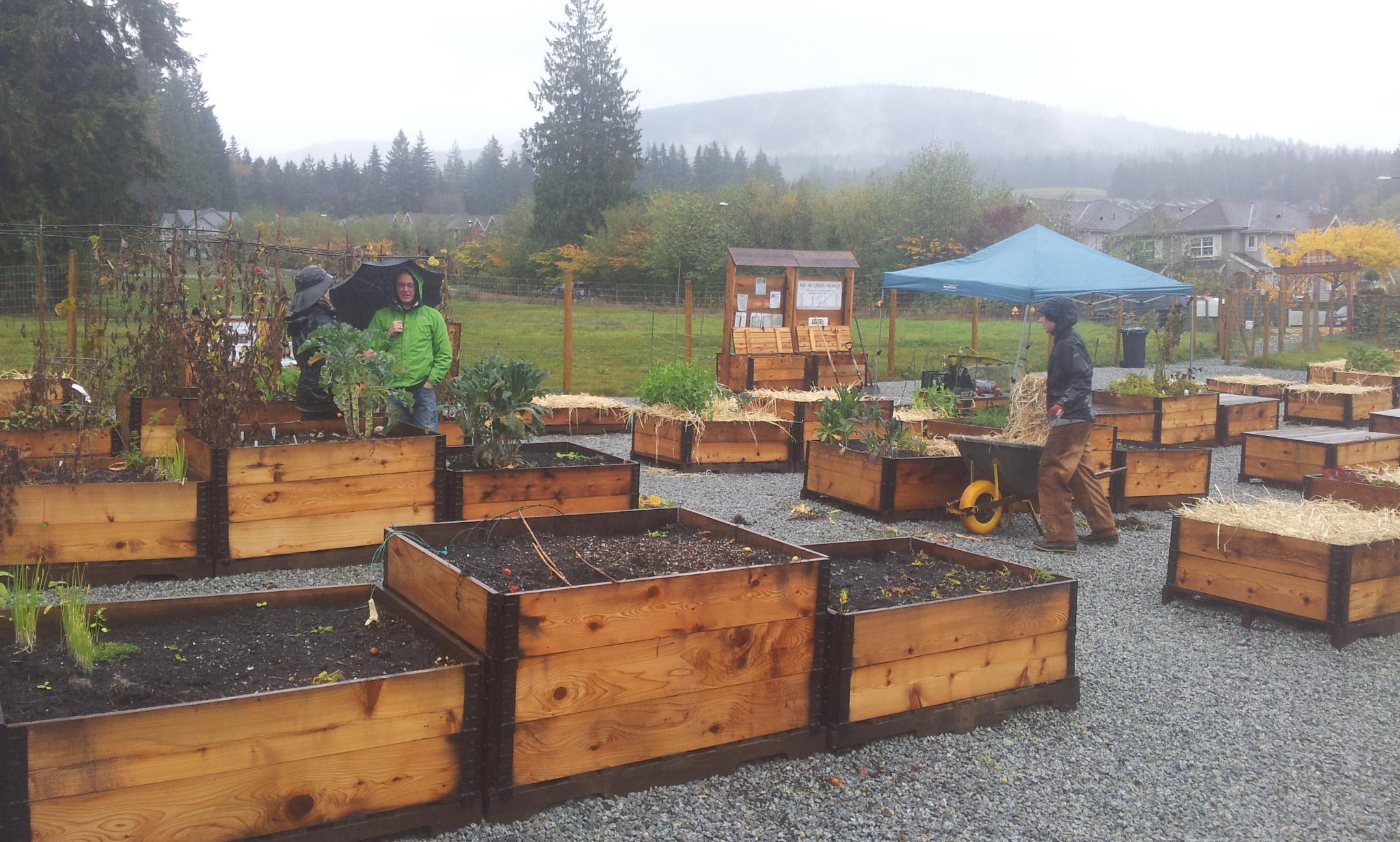 burke-mountain-temporary-community-garden-closing-112013_11244697923_o.jpg