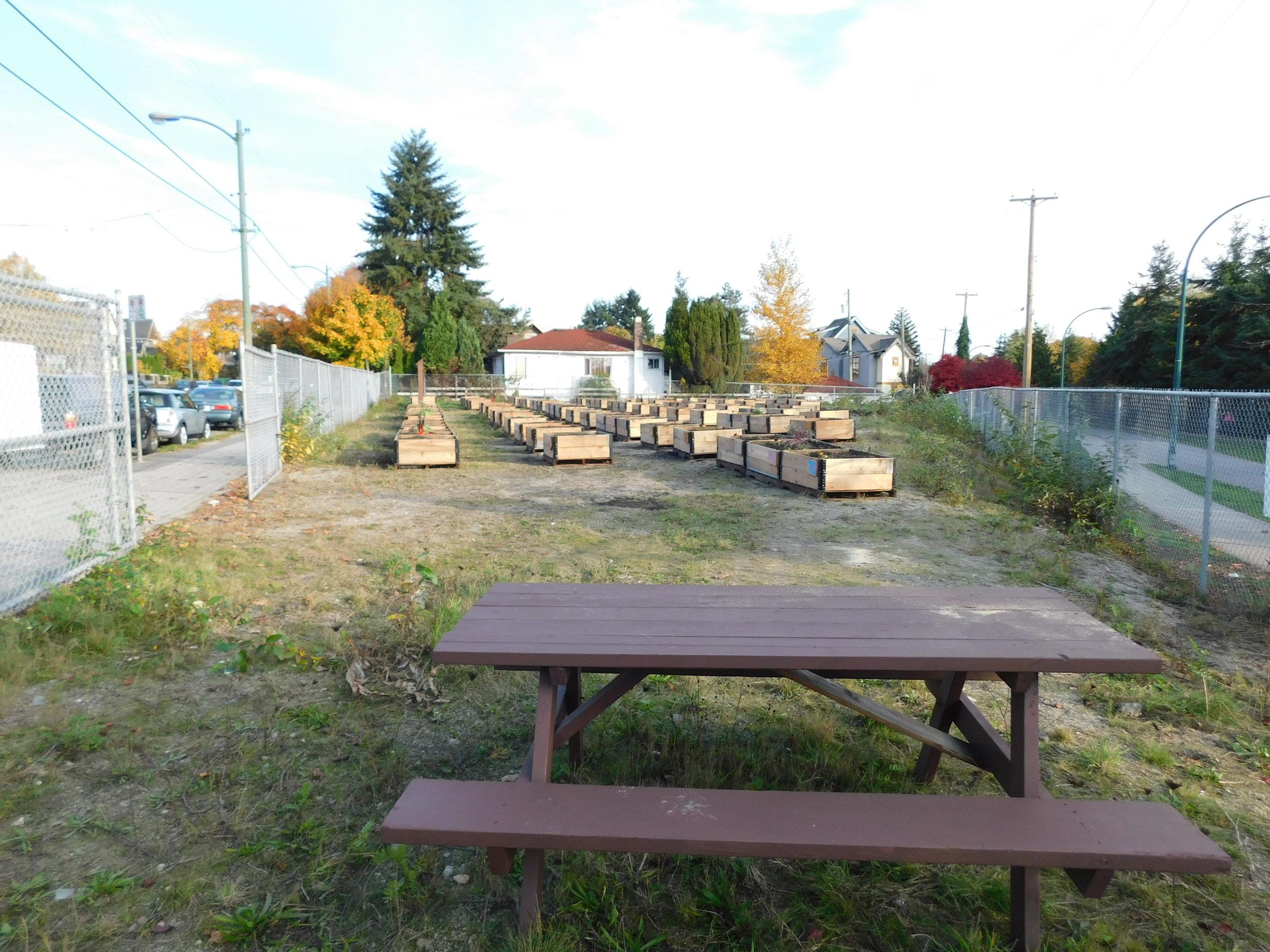 Victoria_Broadway_Vancouver_Community_Garden_Builders-0013.JPG