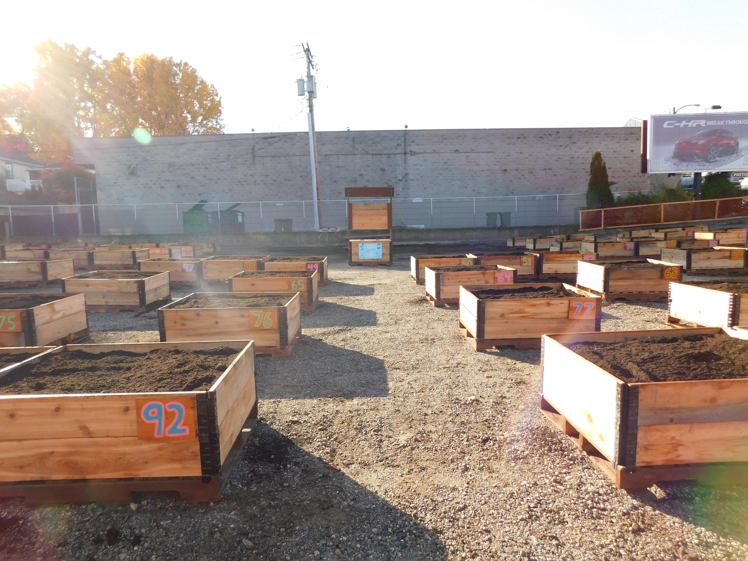Broadway_Alma_Vancouver_Community_Garden_Builders-0010.JPG