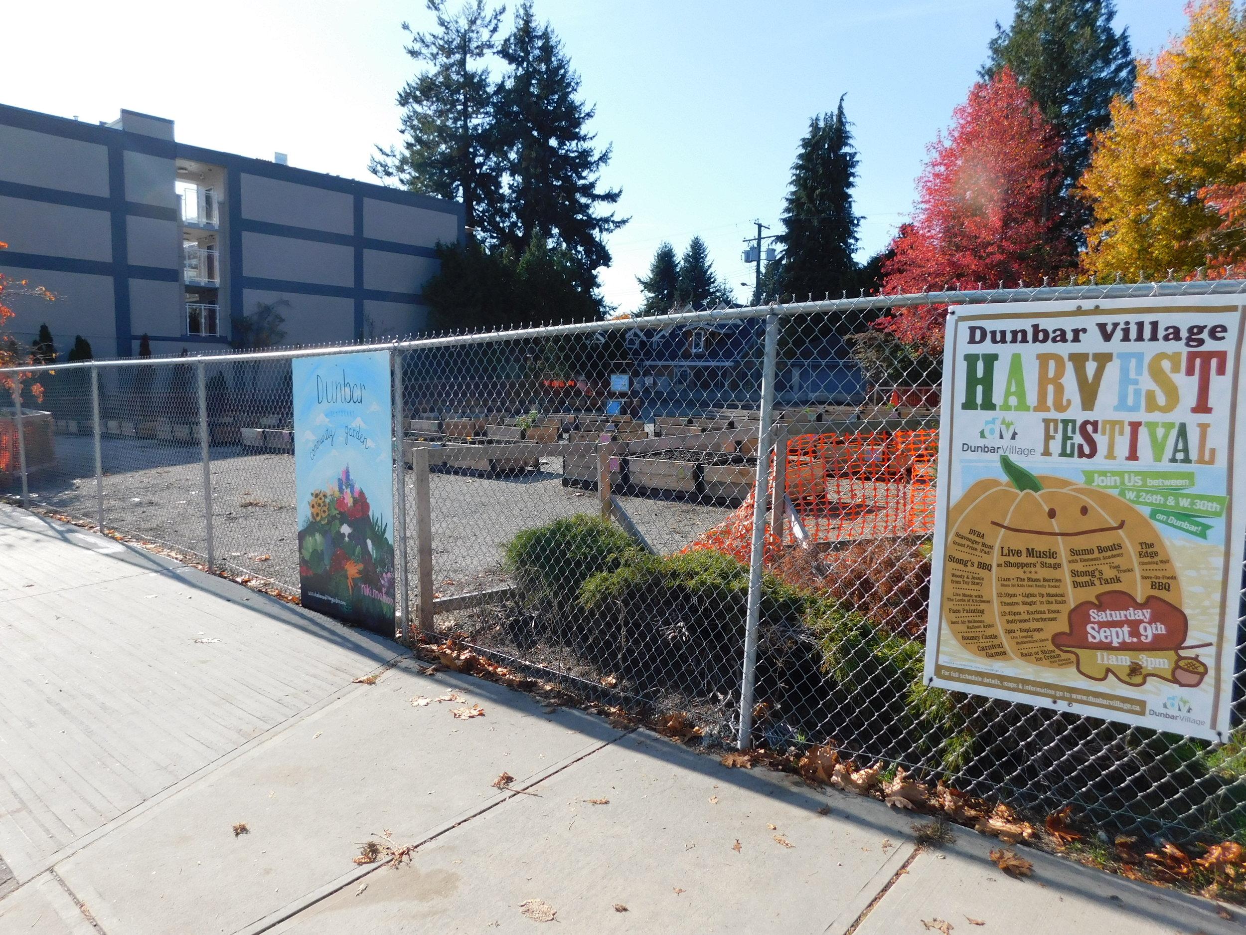 Dunbar_40th_Vancouver_Community_Garden_Builders-0020.JPG