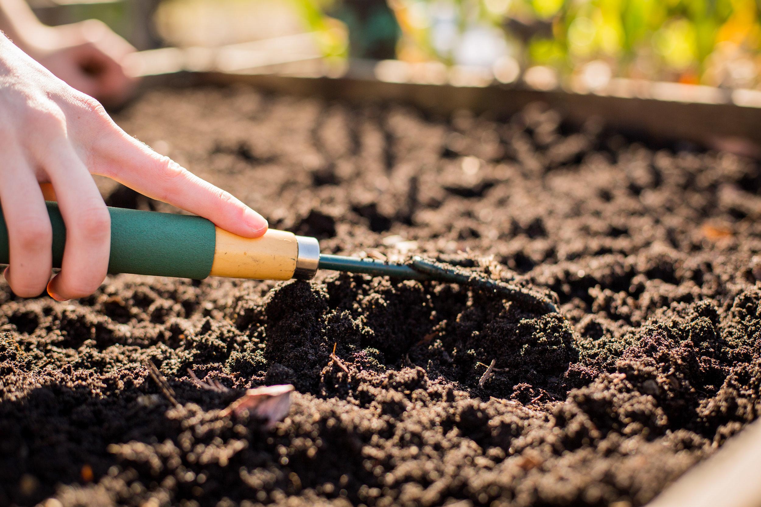 Raised_Garden_Bed_The_Drive_Temporary_Community_Garden_04.2016_Shifting_Growth_048.jpg