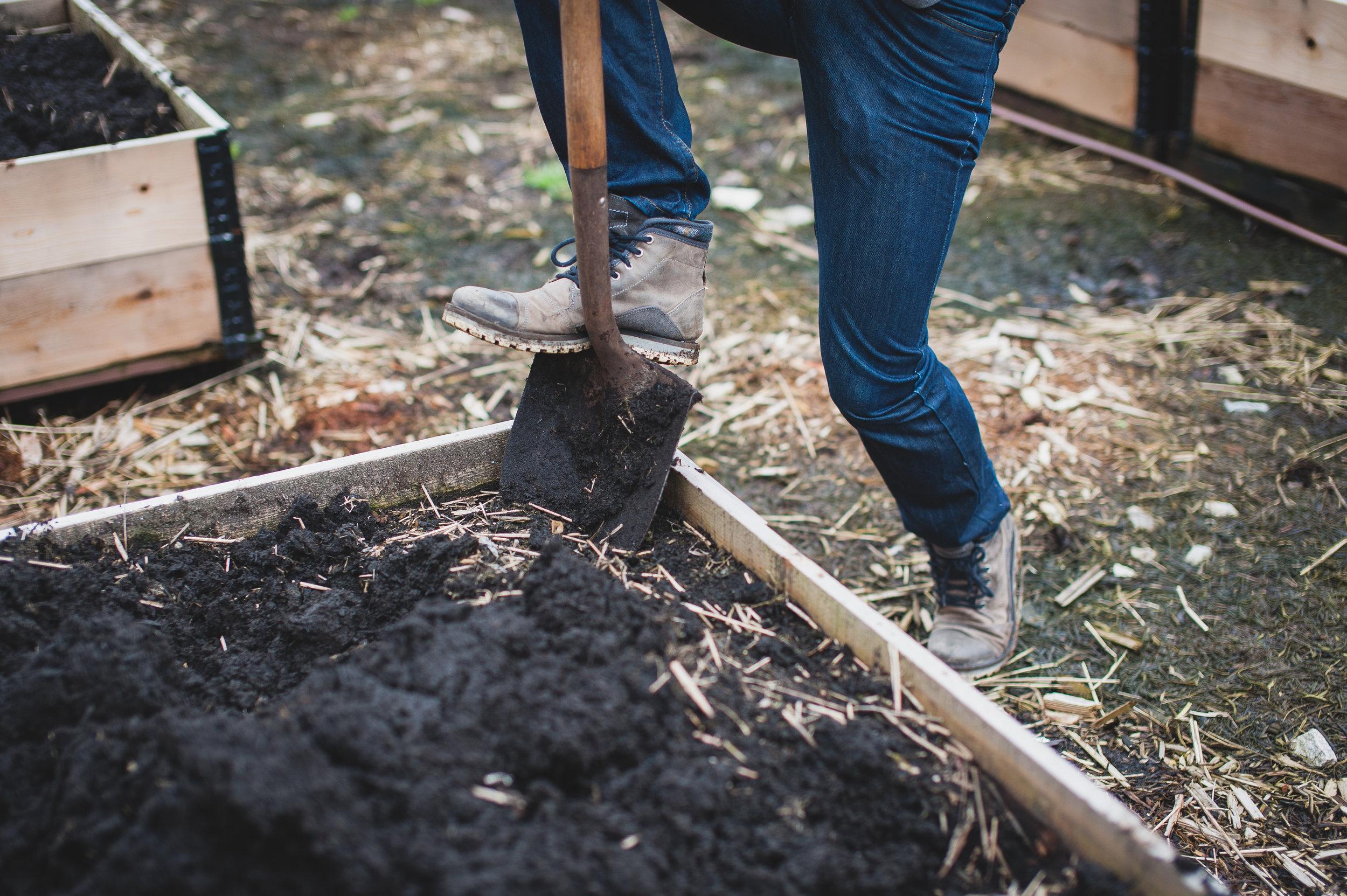 Shifting_Growth_Raised_Garden Beds_Community_Garden_Vancouver - South_False_Creek_Garden - 8.jpg