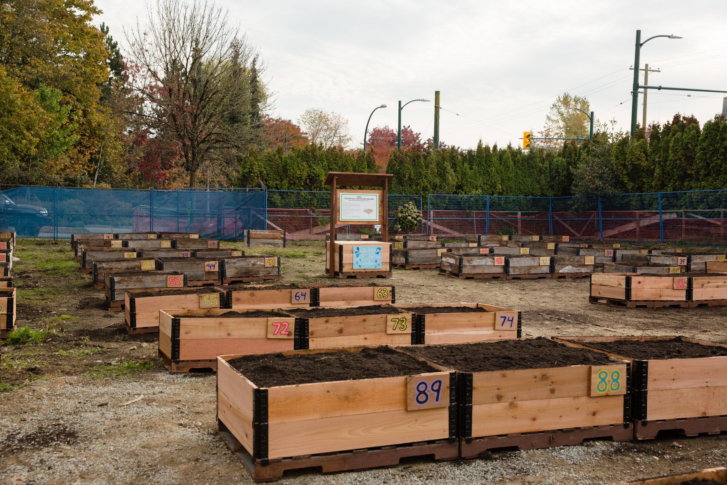 atlin_community_garden.jpg