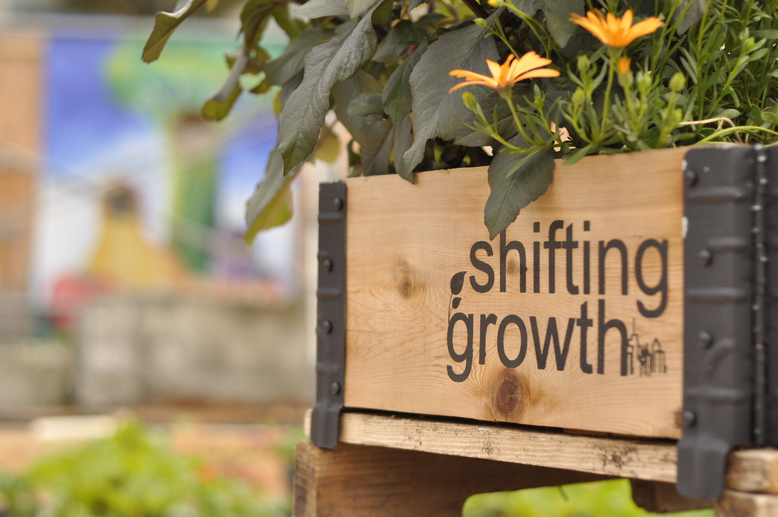 shifting_growth_vancouver_community_garden_builders