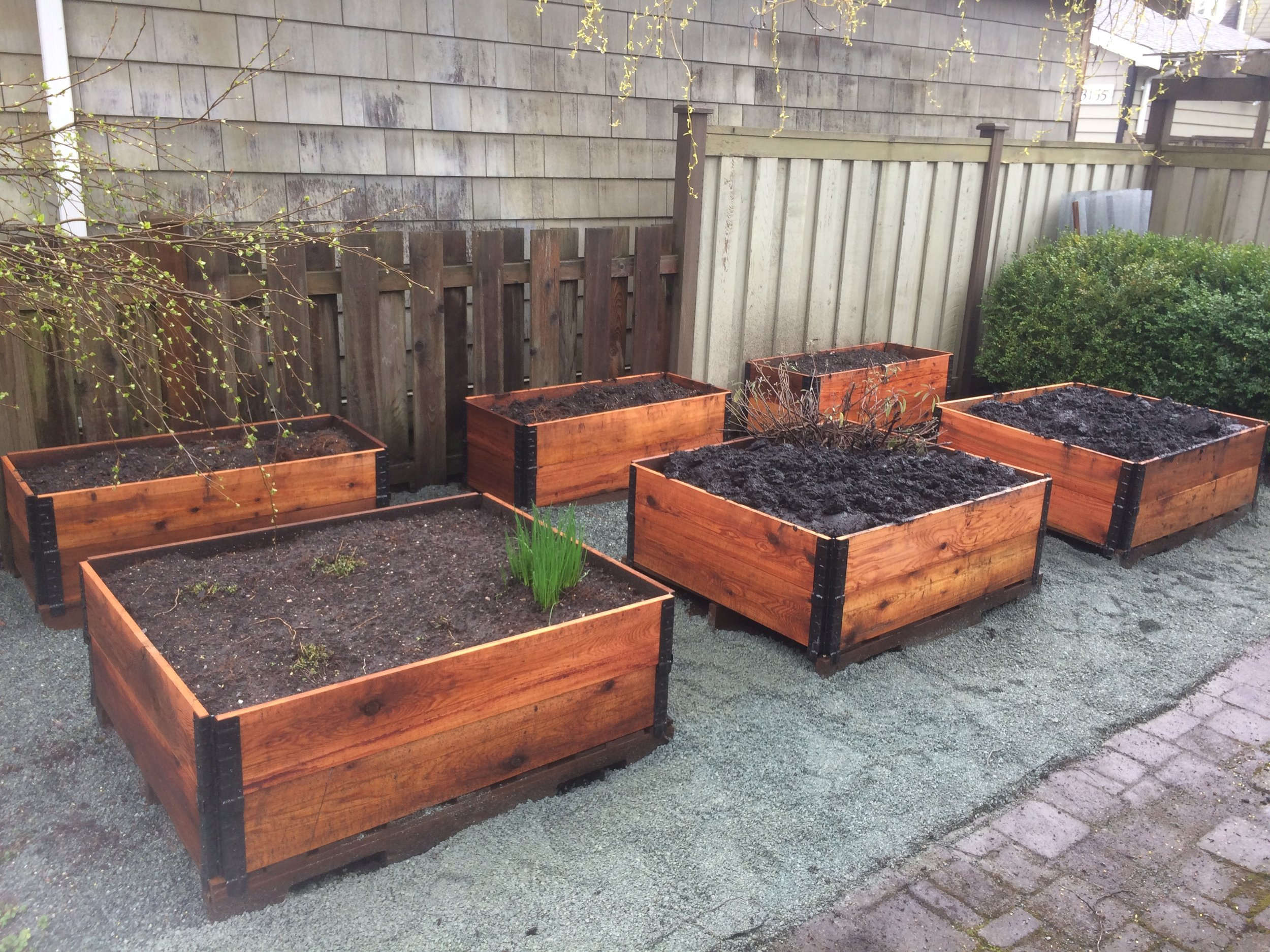 Raised_Garden_beds