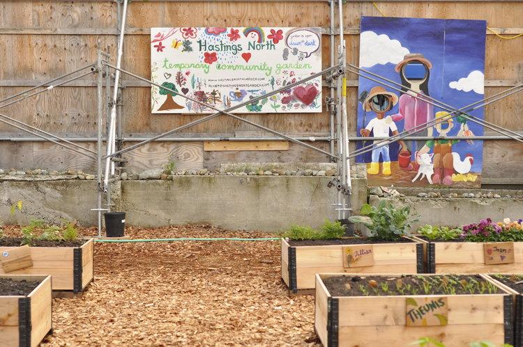 Raised_Garden_Community_Garden_Builders