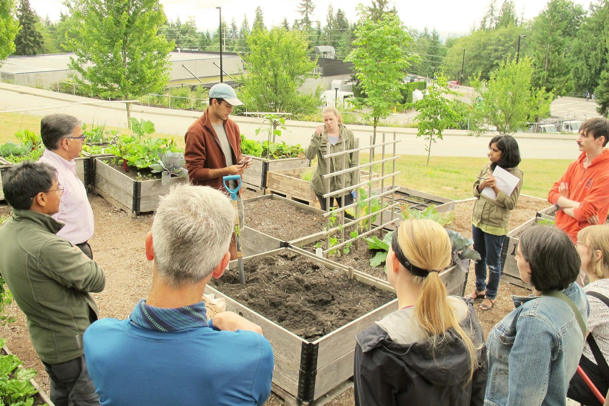 SFU Burnaby Learning Garden Moved -1.jpg