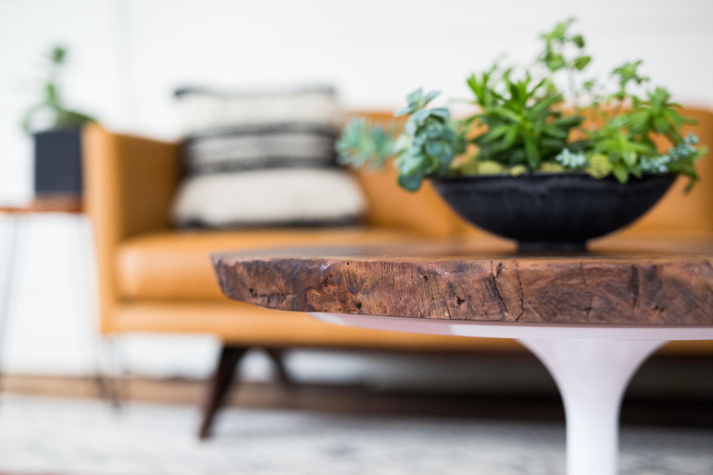 Timber + Tulip Coffee Table