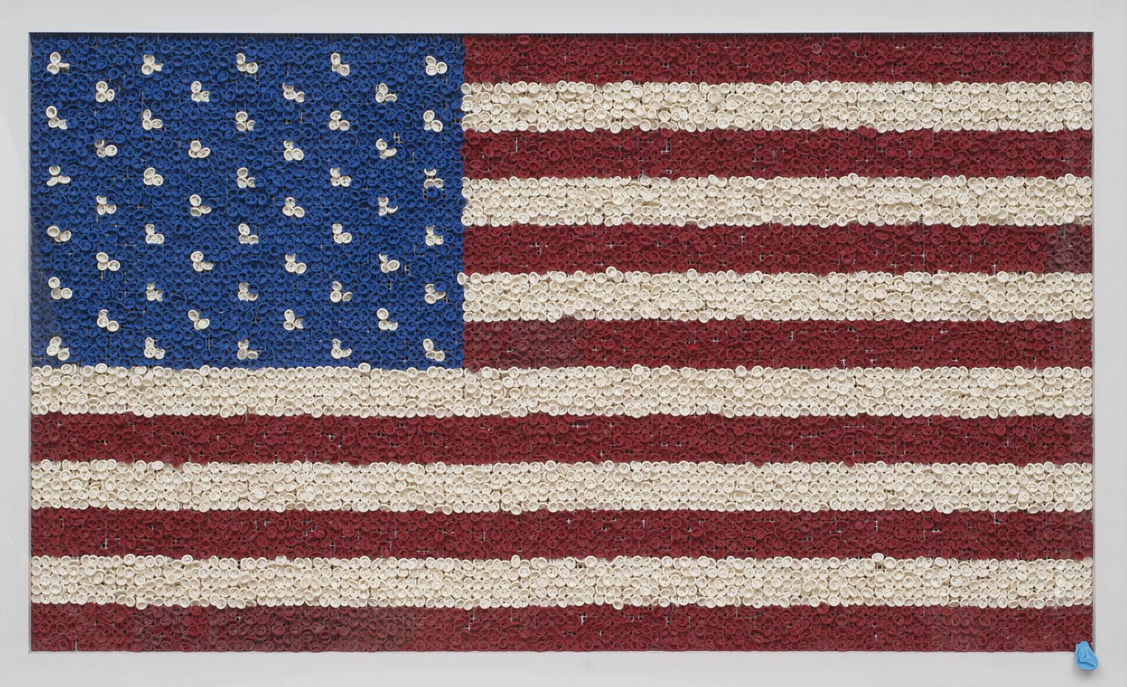 US Flag (Large)