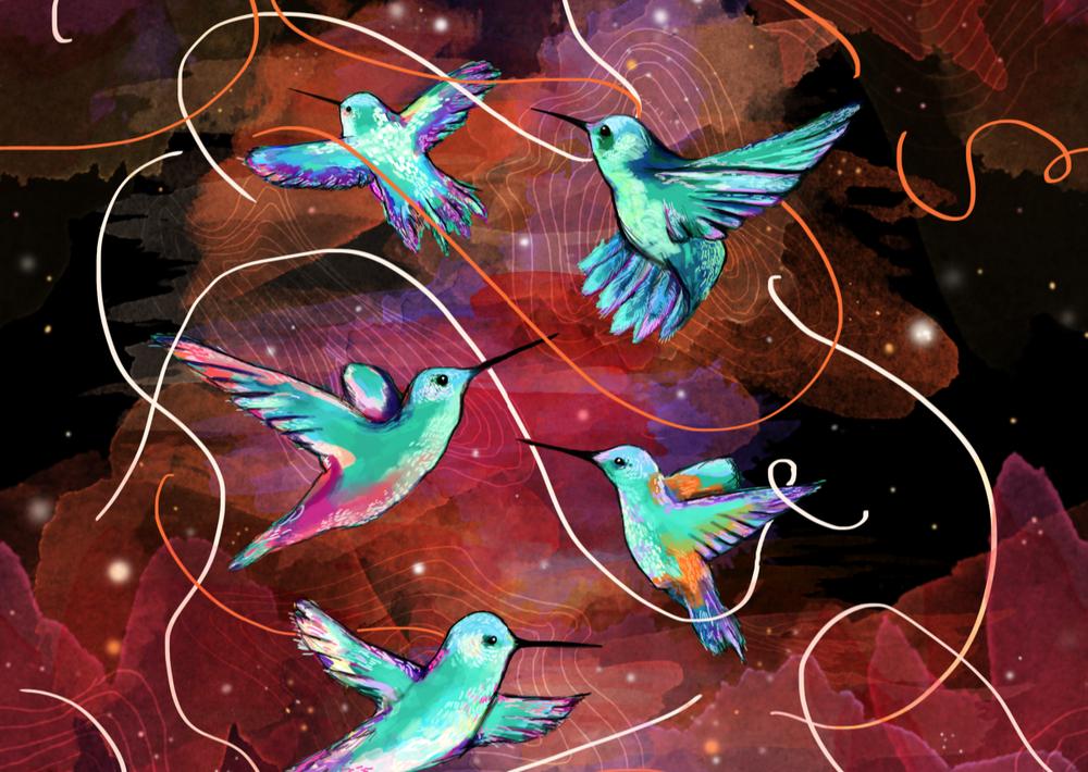 birds_1.png