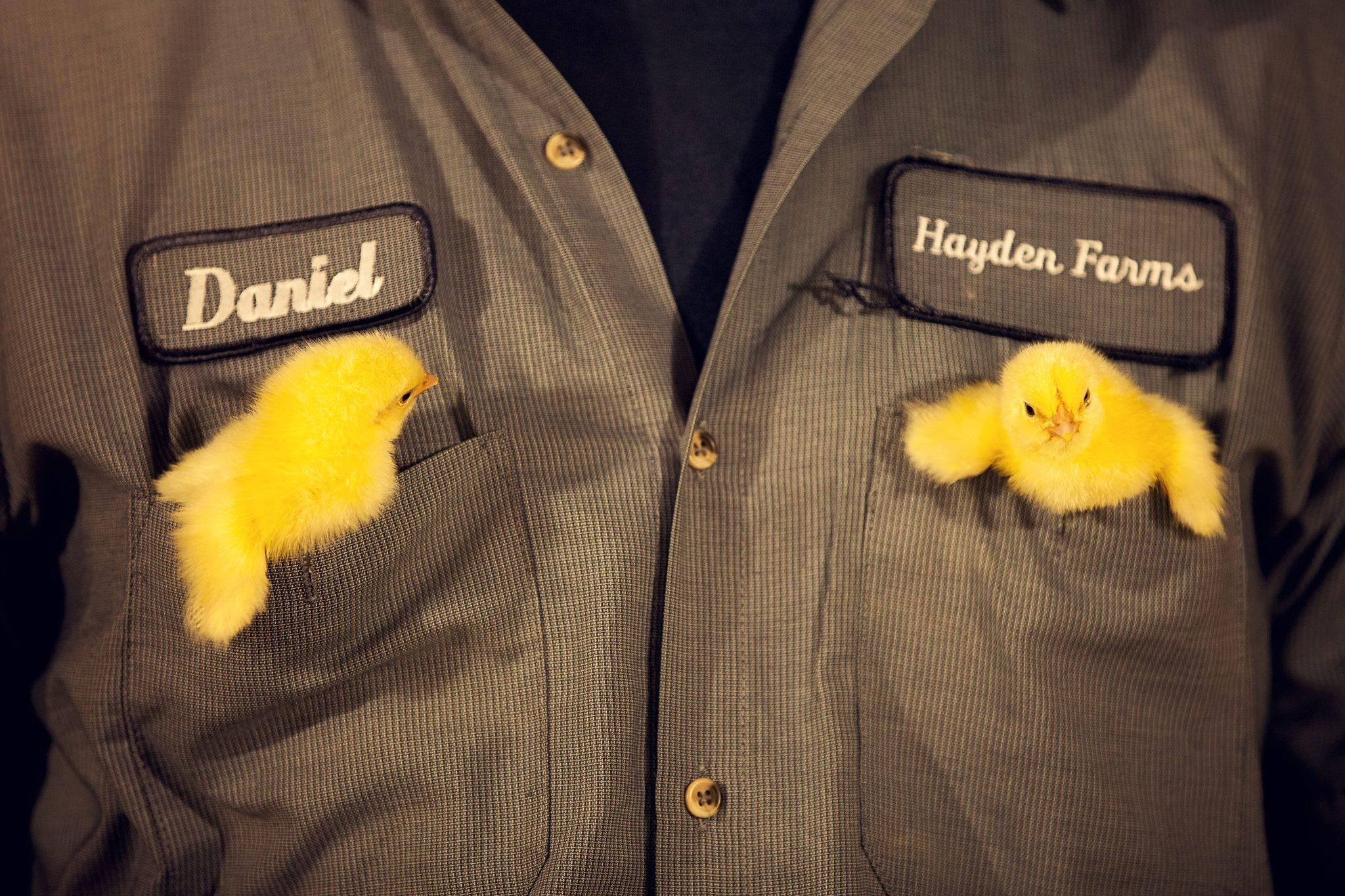 Hayden-Farms-Kentucky_0001.jpg