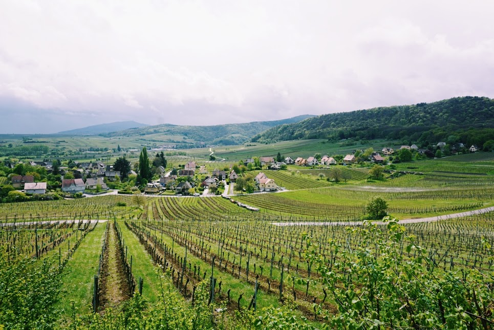 Alsace wine route region views