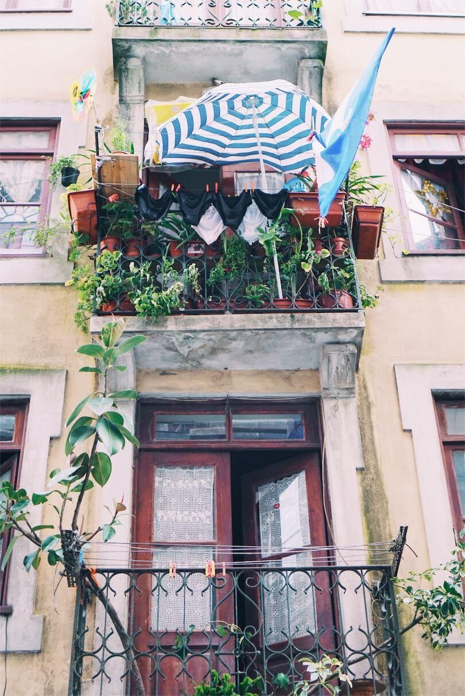 plants on the balcony Porto