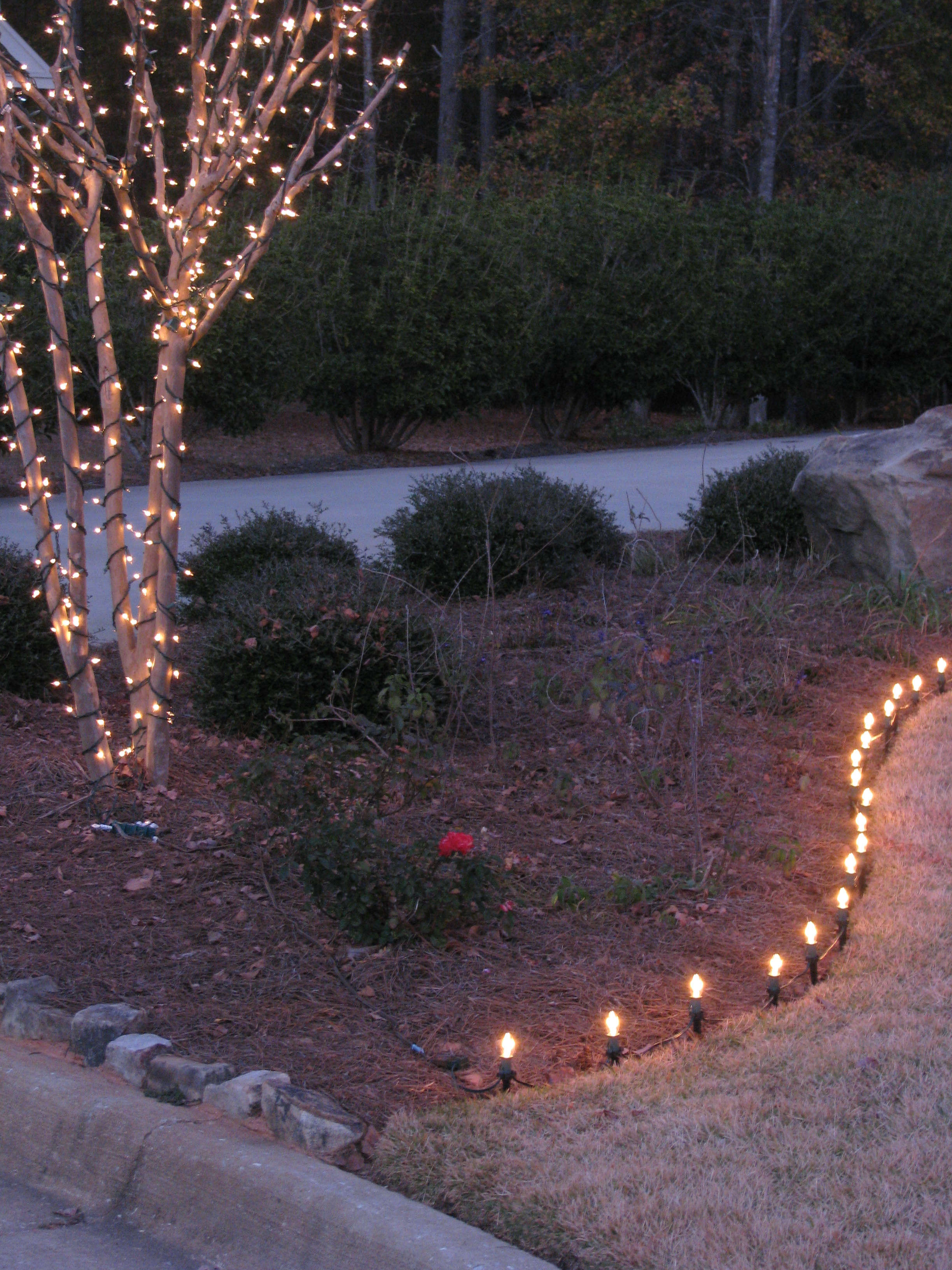 glitter and glow chrismas decor residential exterior (9).jpg