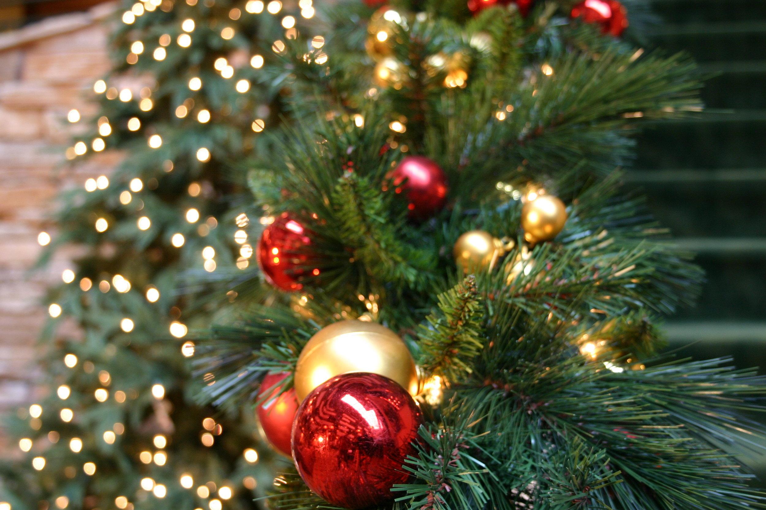 Ornament Garland, Fraser Tree.JPG