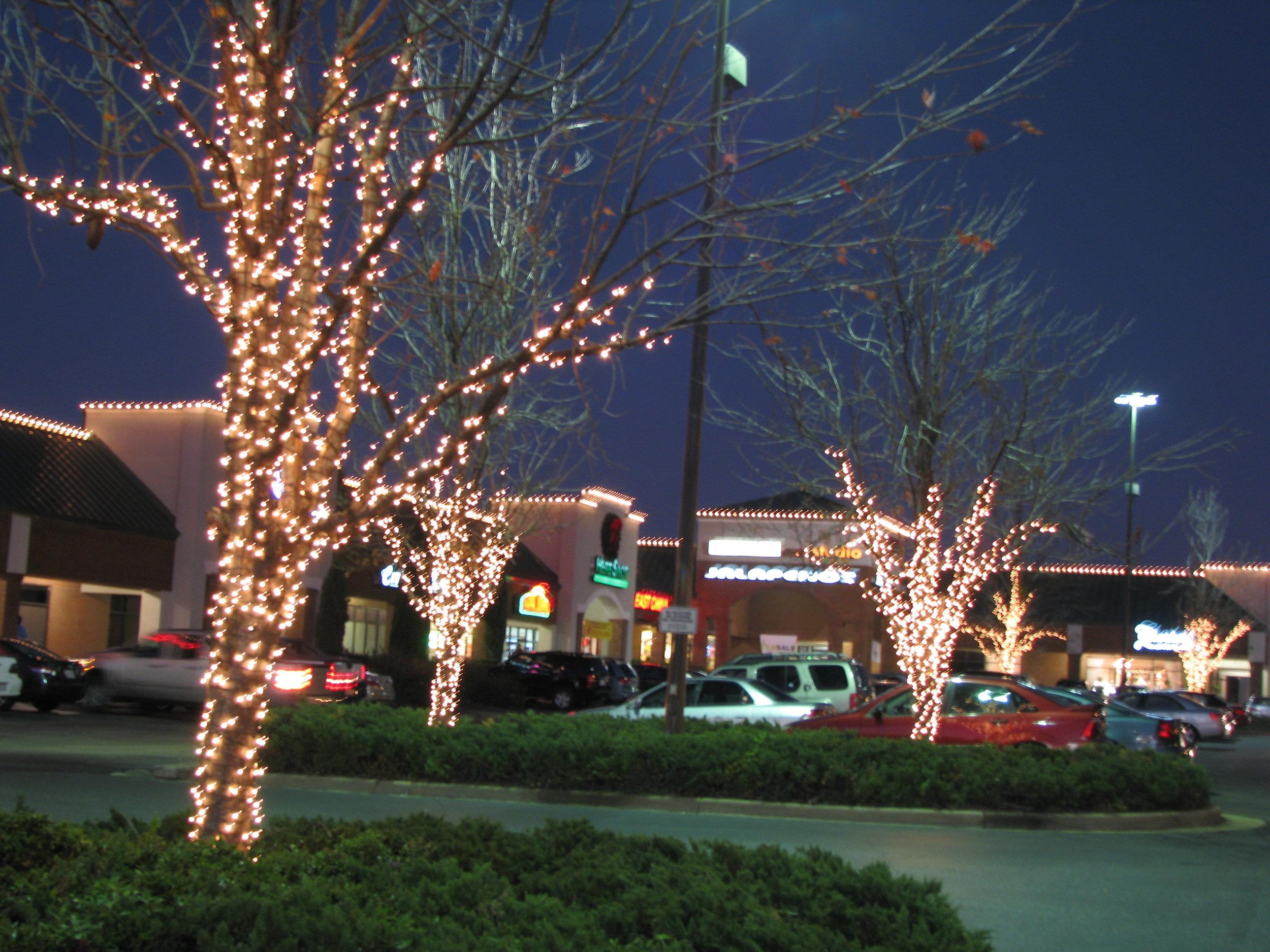 barbee, park, rowan brown, house glitter and glow.JPG