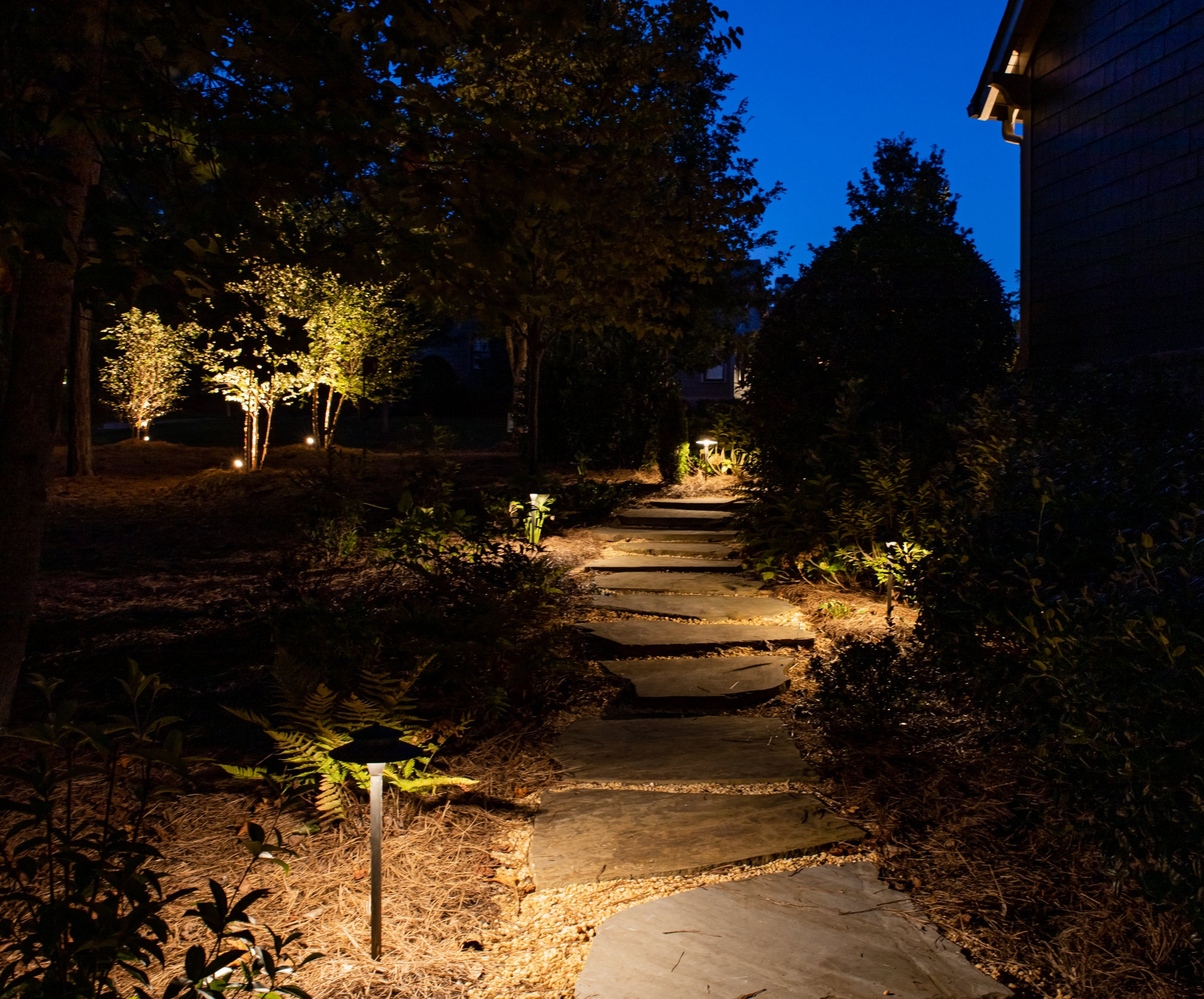 Path Lighting - landscape lighting