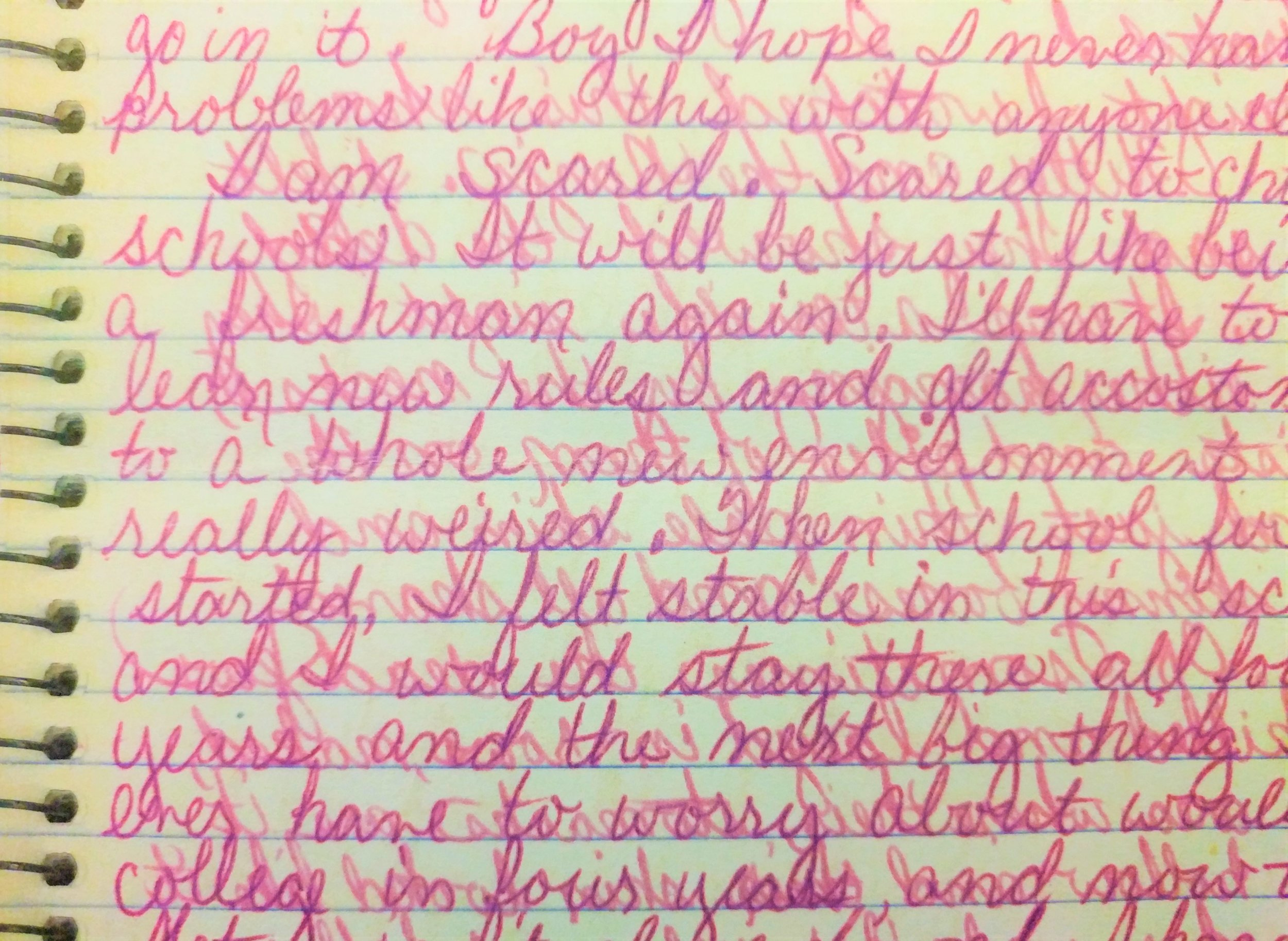 A page from Rhonda's high school journal.
