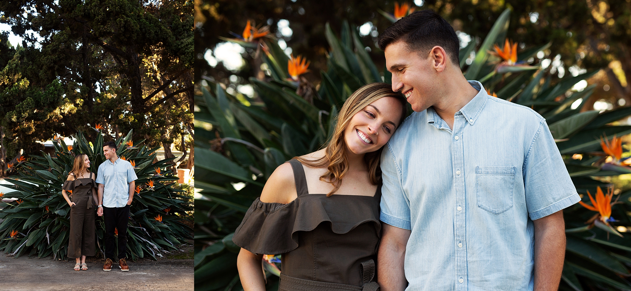 Golden hour engagement session at Balboa Park, San Diego, California. Meaghan and Eli pose in front of a giant bird of paradise bush