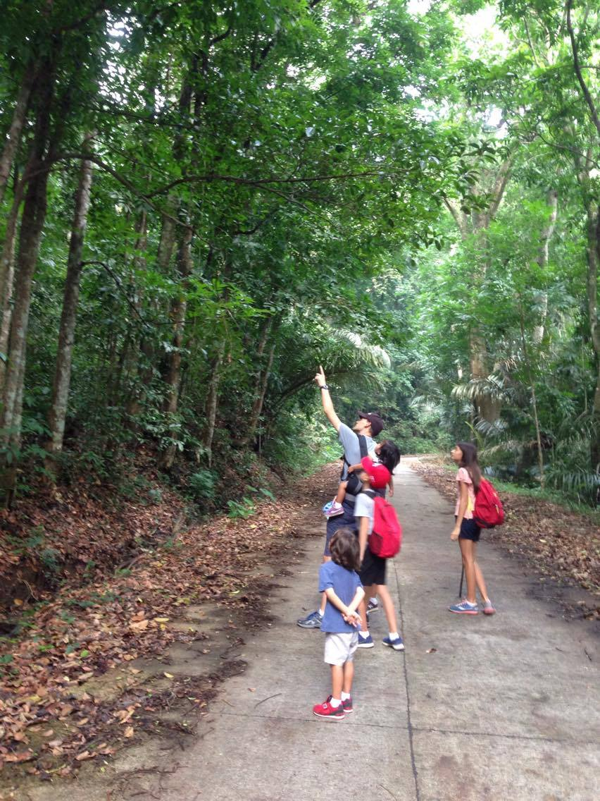 Lots to see and hear on the trail (birds, bugs and butterflies)