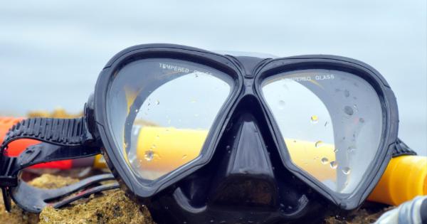 snorkeling tours.jpg