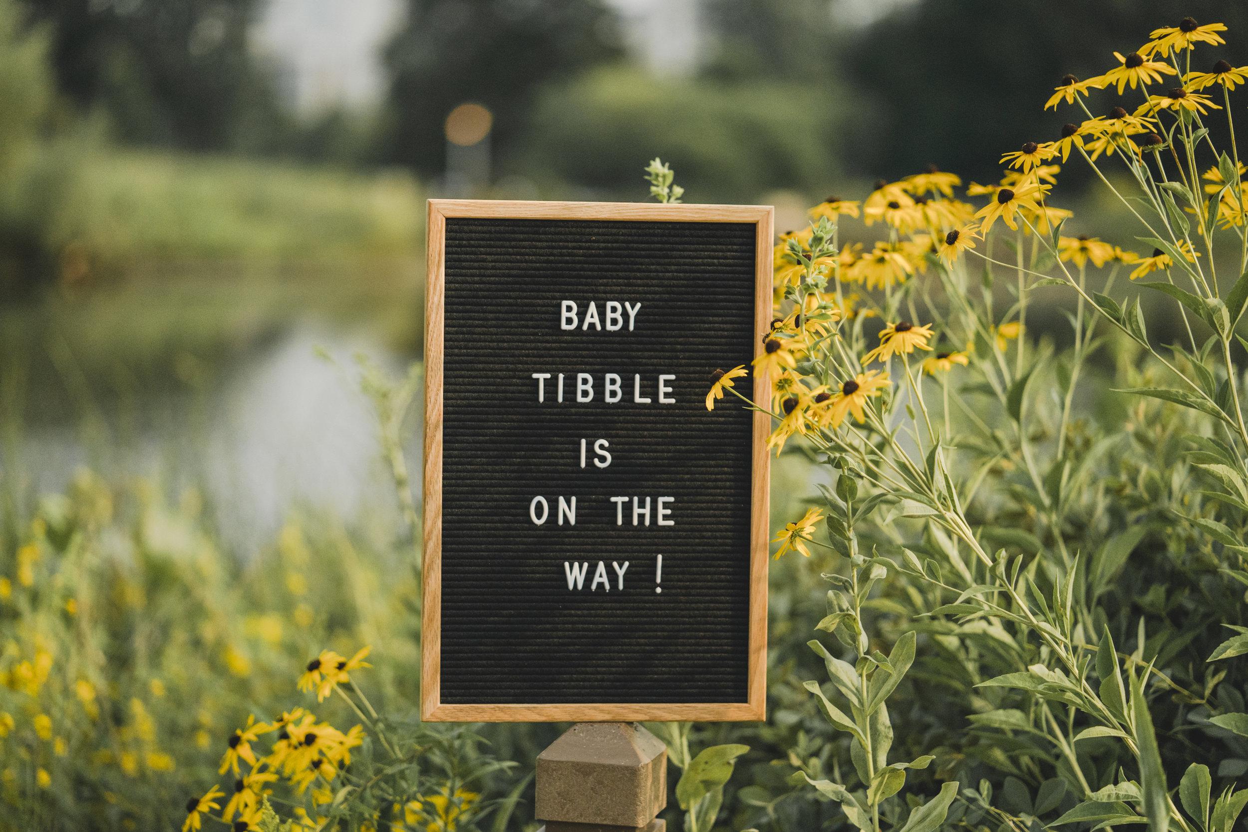 Christina Maternity Shoot - Datflipmel Photo & Films-1.jpg