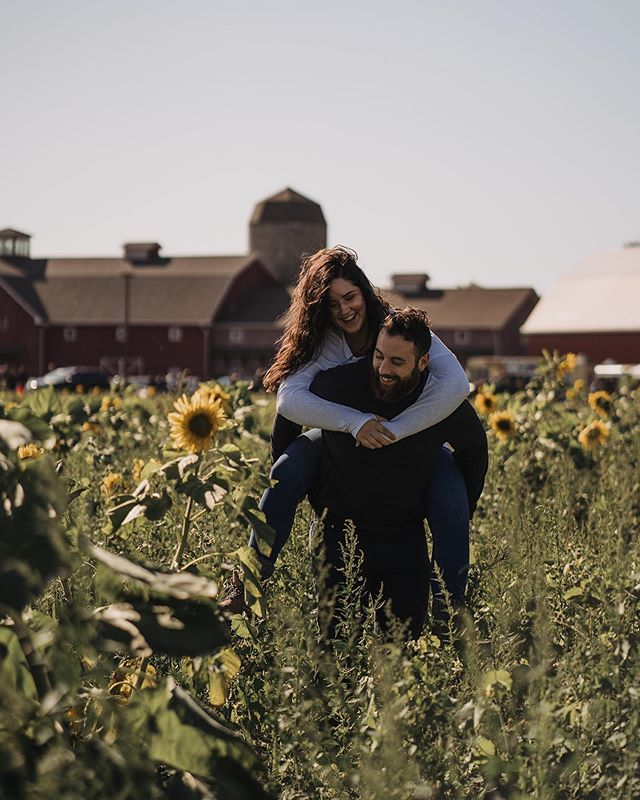 PSA; Indiana sunflower fields aren't dead yet 😂  Cailynn has become one of our really good friends &we are so glad we finally got to meet her hubby, Mike! We had this day planned for what seemed like months. Wedding season has been cray and we have been trying to get over a cold, but we're so glad we were able to make this day happen! We went apple picking and had fun in a pumpkin patch! But the best surprise was the sunflower field! 🌻