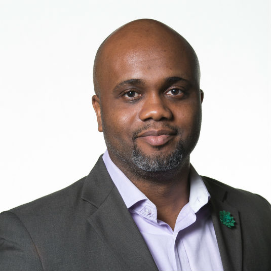 Stephen Ozoigbo,  CEO, African Technology Foundation & Managing Partner for the Lions@frica initiative.