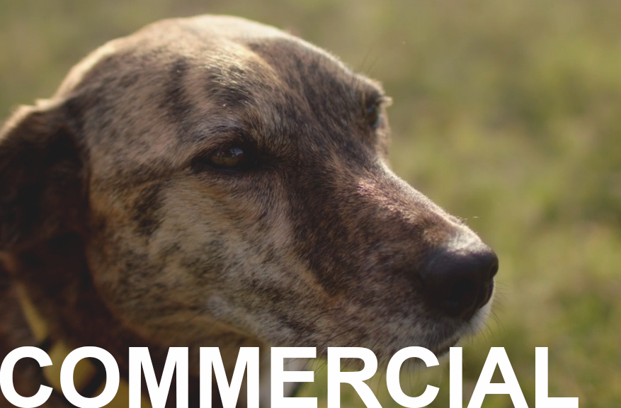 COMMERCIAL WORK