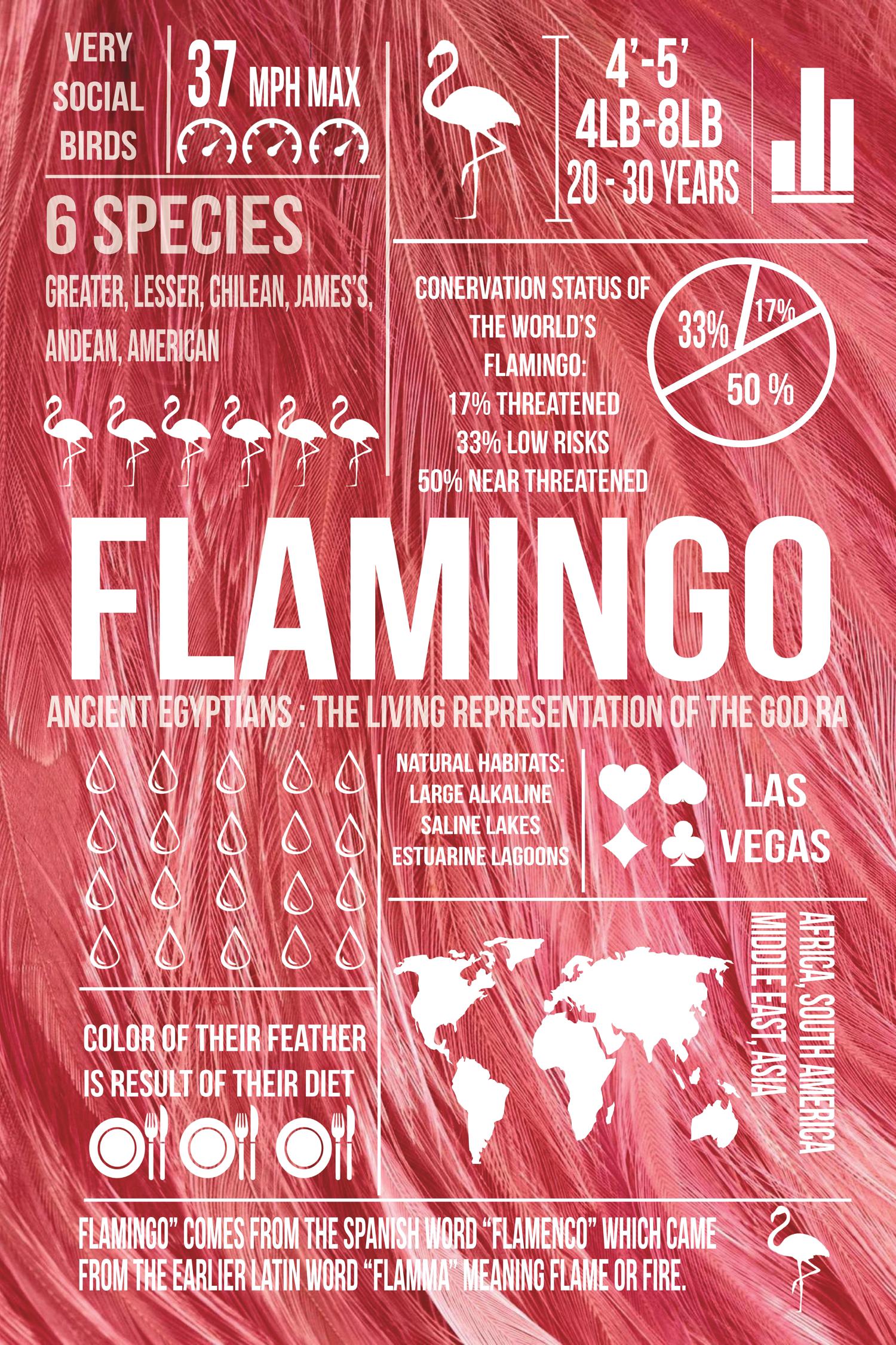 infographics-port.png