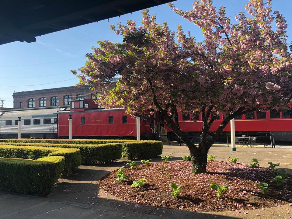 chattanooga choo choo train cars